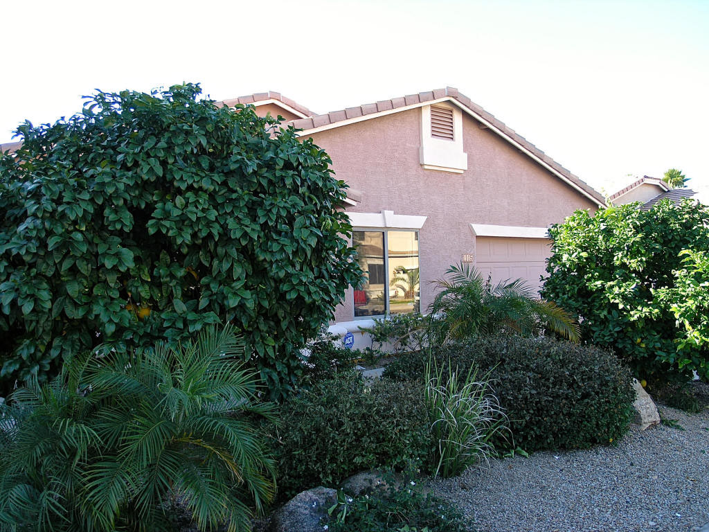 Single Family Home for Sale at Outstanding Single Level Floorplan 1115 E POTTER DR Phoenix, Arizona 85024 United States