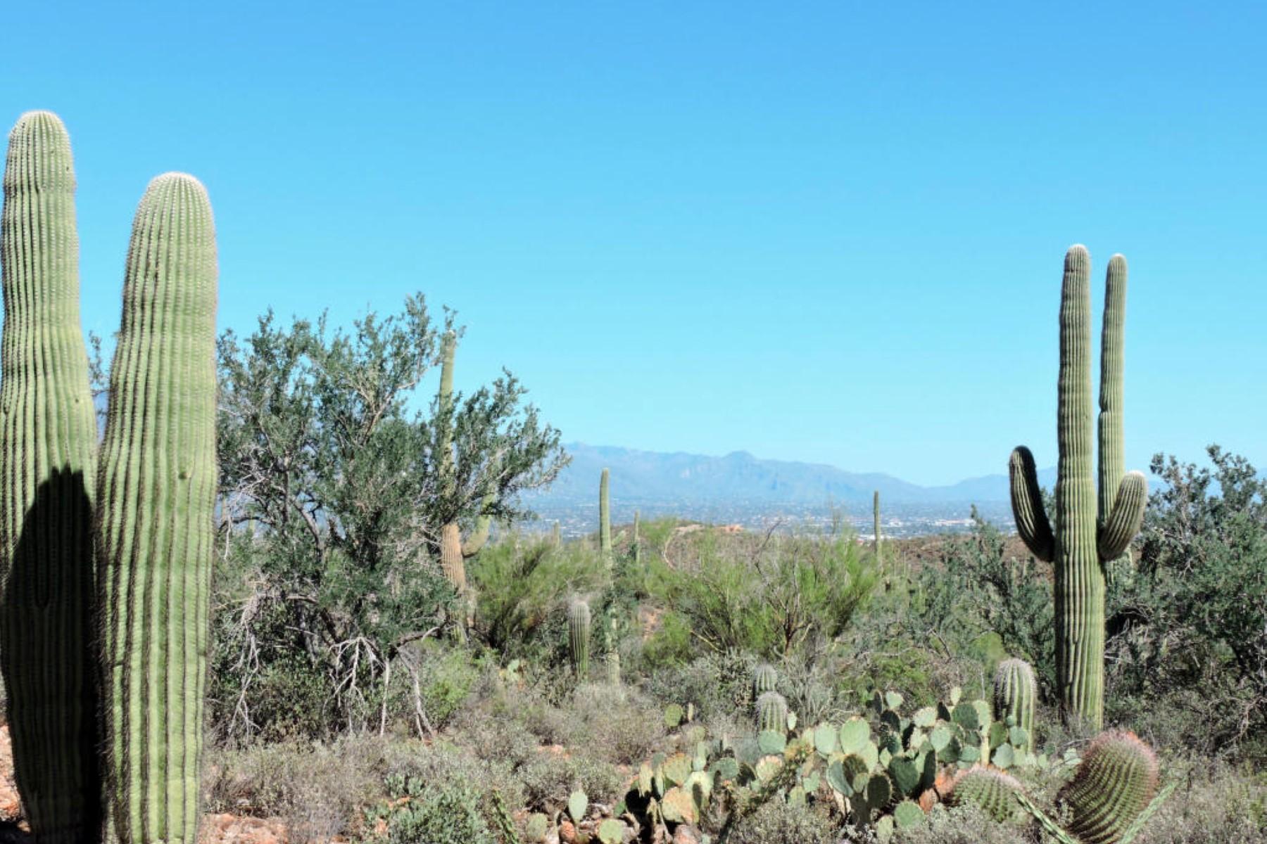 Terreno por un Venta en Amazing Homesite With Breathtaking Panoramic Views 3975 N Avenida Dos Vistas Tucson, Arizona 85745 Estados Unidos