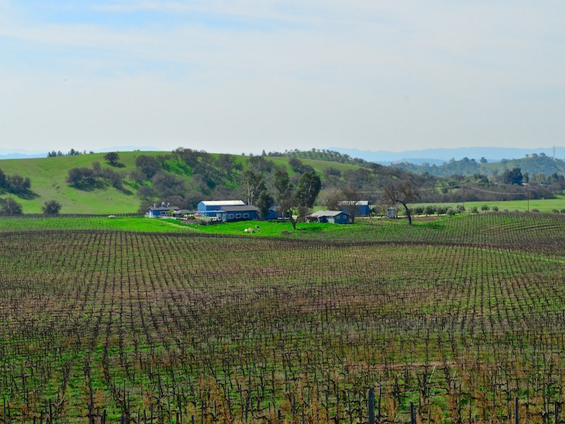 sales property at 145+- Acre Paso Robles Winery