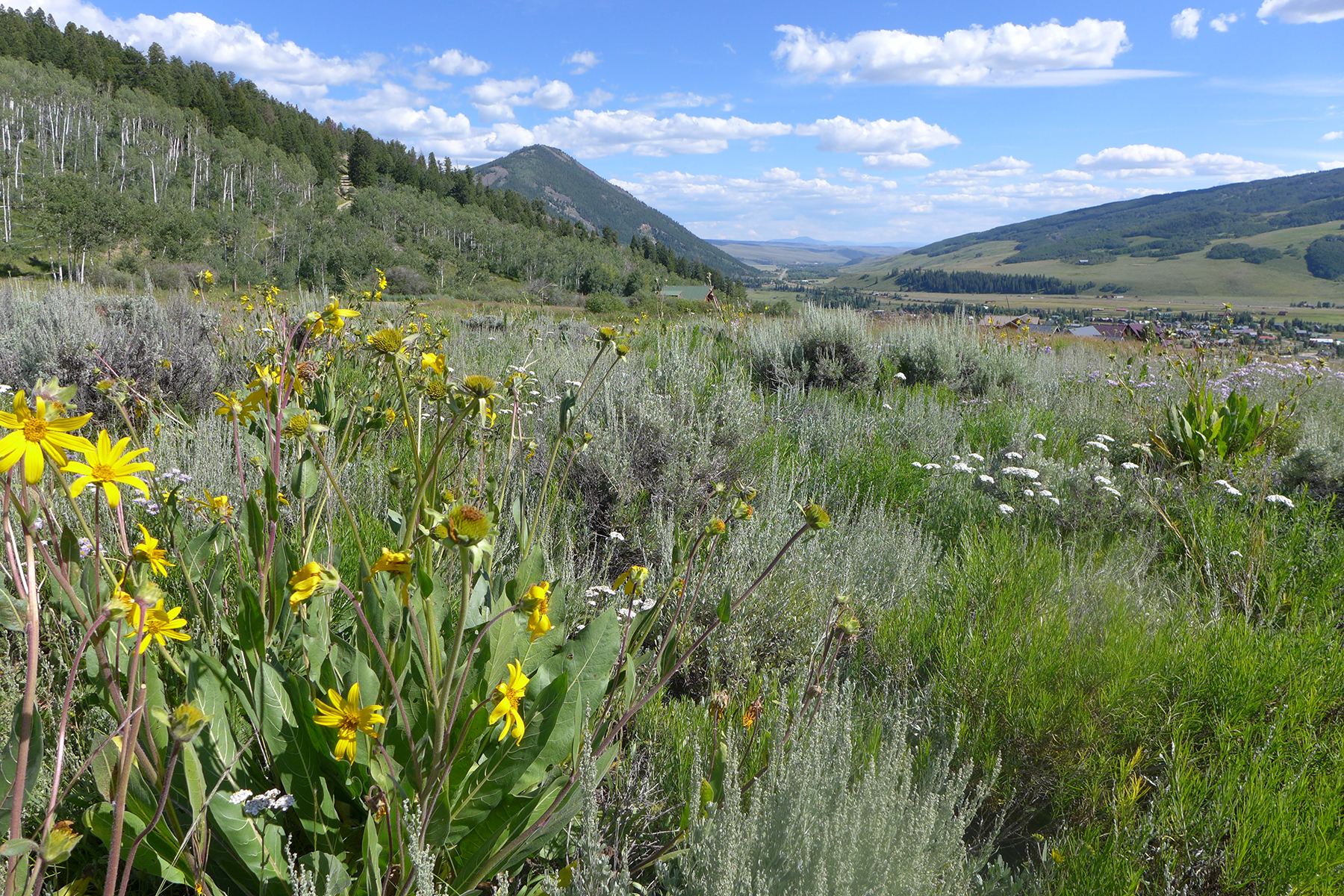 Land for Sale at Private and Serene Lot 451 Anderson Drive Crested Butte, Colorado 81224 United States