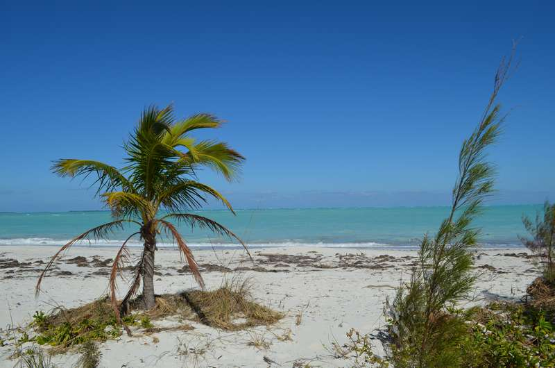 Land for Sale at Banyan Beach Lot Treasure Cay, Abaco Bahamas