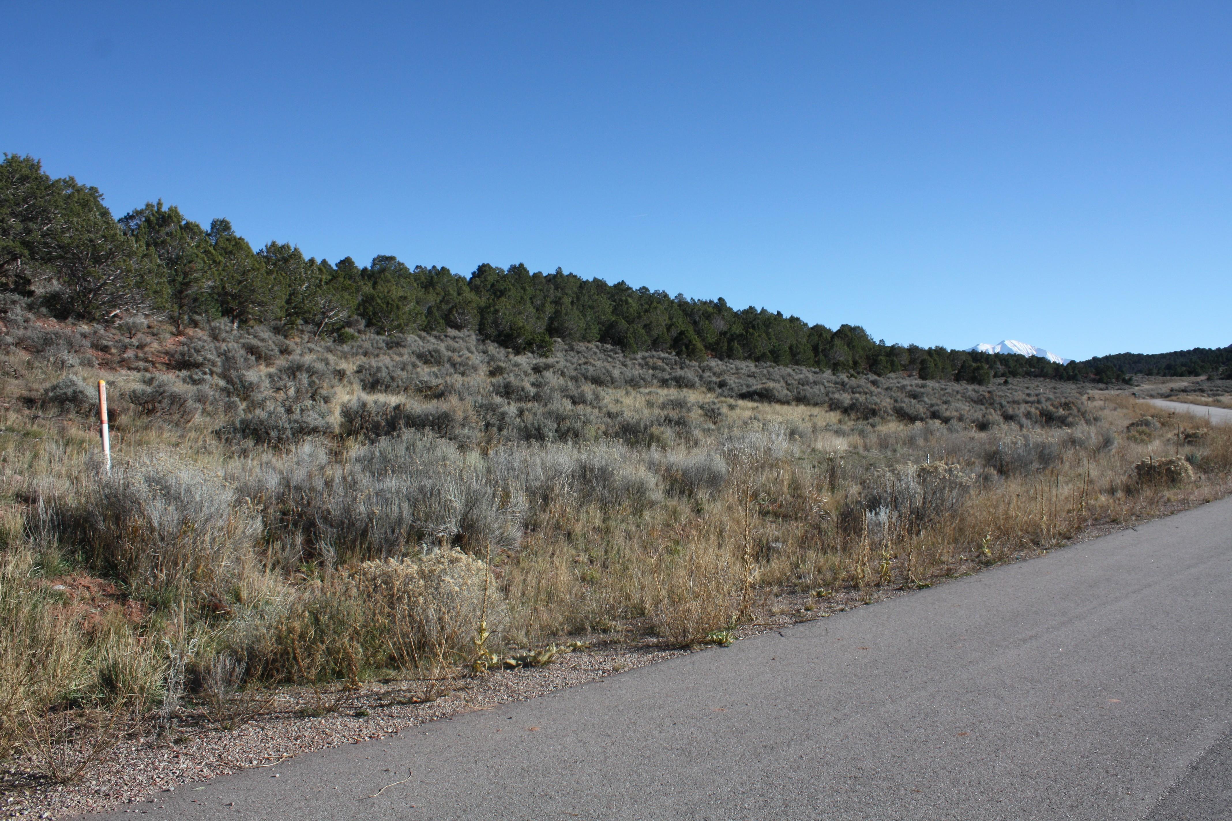 Land for Sale at Lot 59 Springridge Reserve Lot 59 Hidden Valley Glenwood Springs, Colorado, 81601 United States
