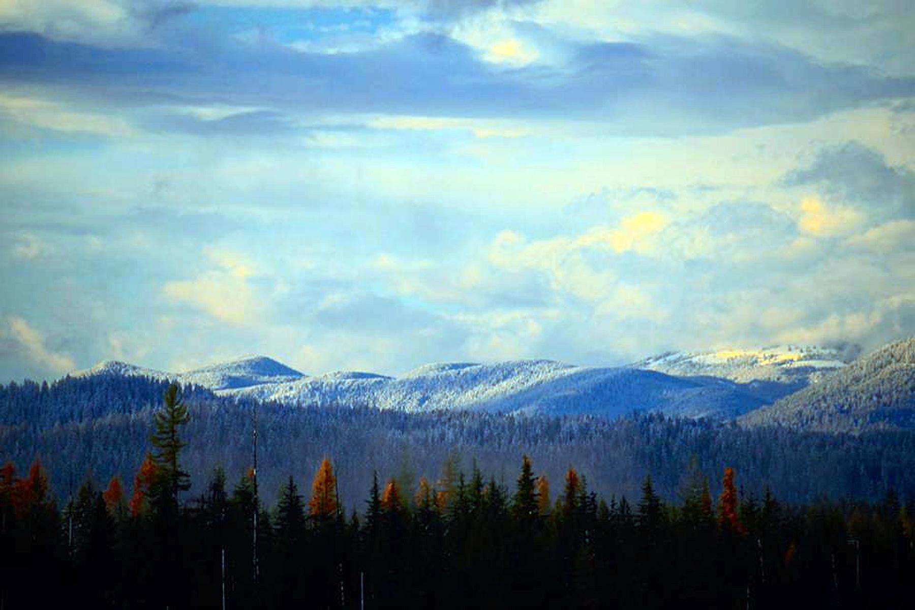 Terreno por un Venta en BUSHWOOD ESTATES Lot 6 1598 Lost Creek Rd Coolin, Idaho, 83821 Estados Unidos