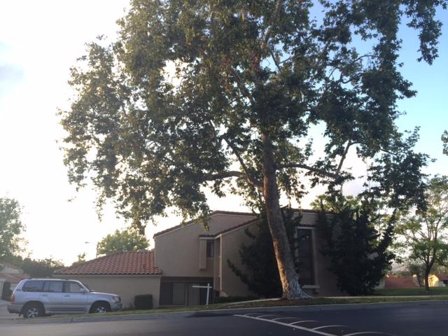 단독 가정 주택 용 매매 에 677 Colonial Cr Fullerton, 캘리포니아, 92835 미국