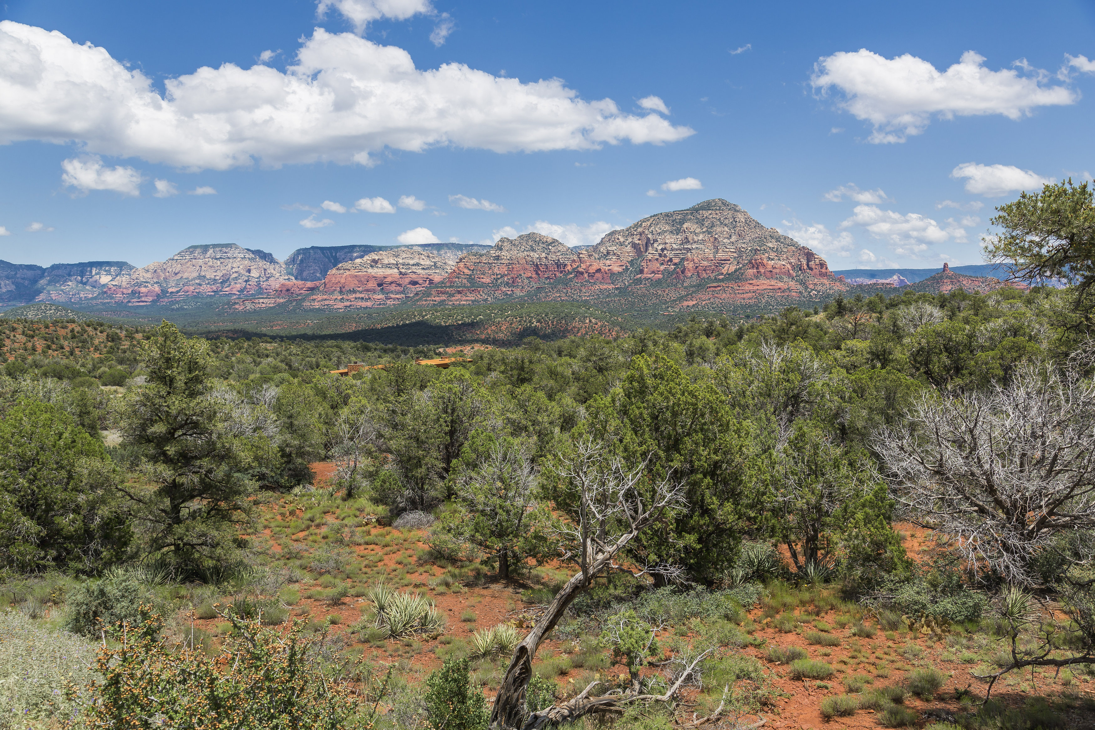 Terreno por un Venta en Lot 19 Very private lot with expansive red rock views. 155 Altair AVE 19 Sedona, Arizona, 86336 Estados Unidos