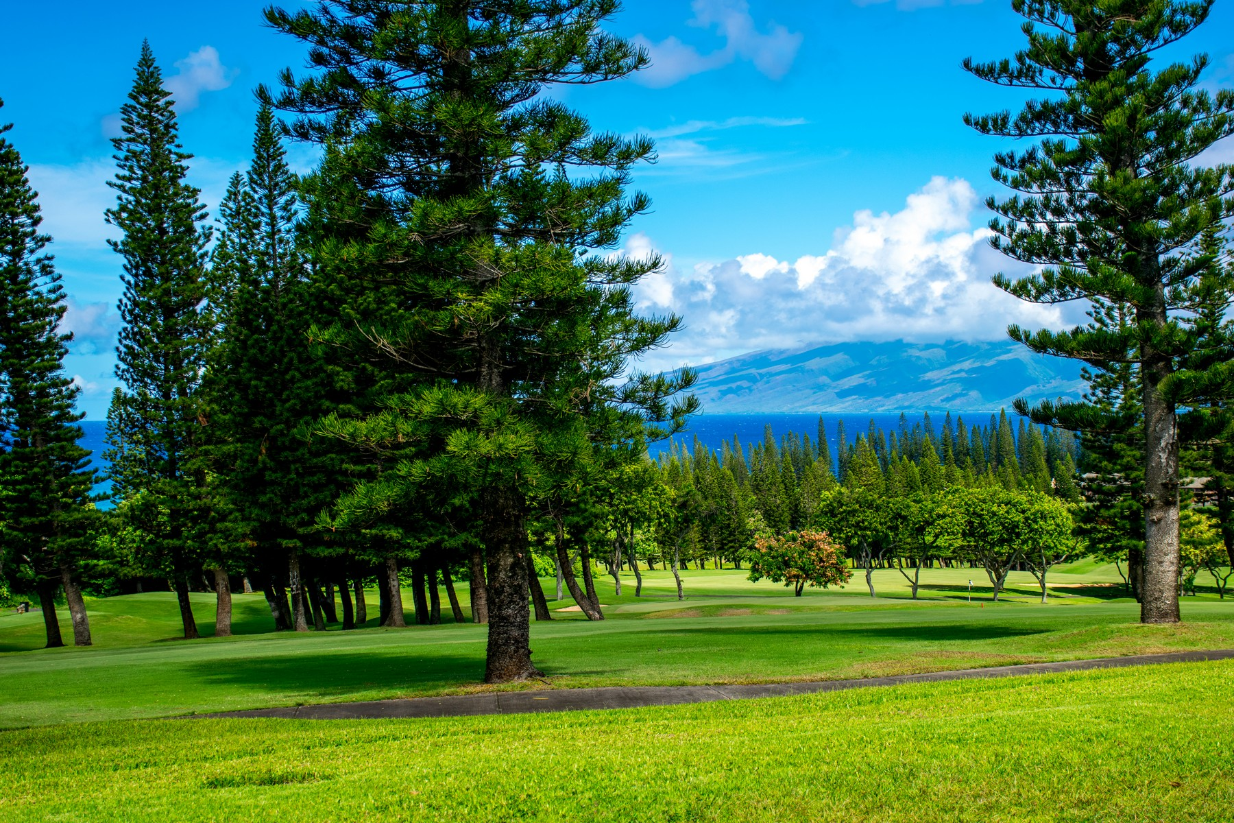 共管式独立产权公寓 为 销售 在 Stunning Villa Overlooking the Kapalua Bay Course 500 Kapalua Drive, Kapalua Golf Villas 27P1, 2 卡帕鲁亚, 夏威夷, 96761 美国