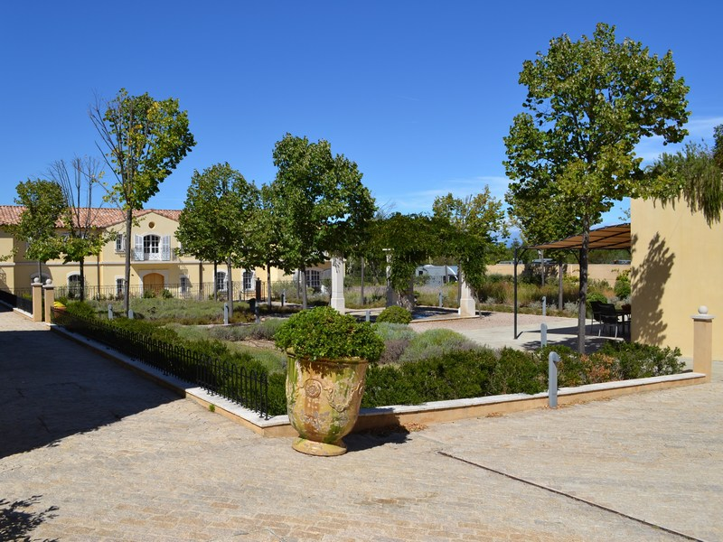 Property Of Vineyard in the Provence