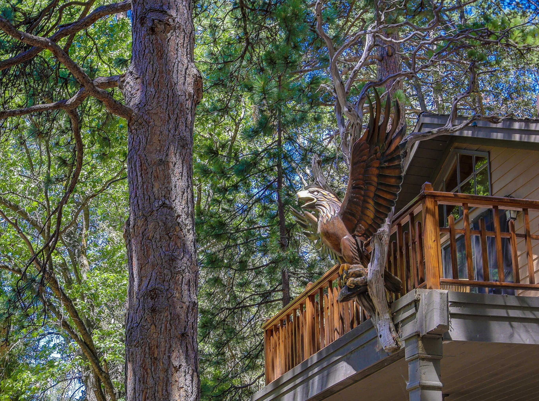 Villa per Vendita alle ore 55450 Forest Haven Idyllwild, California, 92549 Stati Uniti