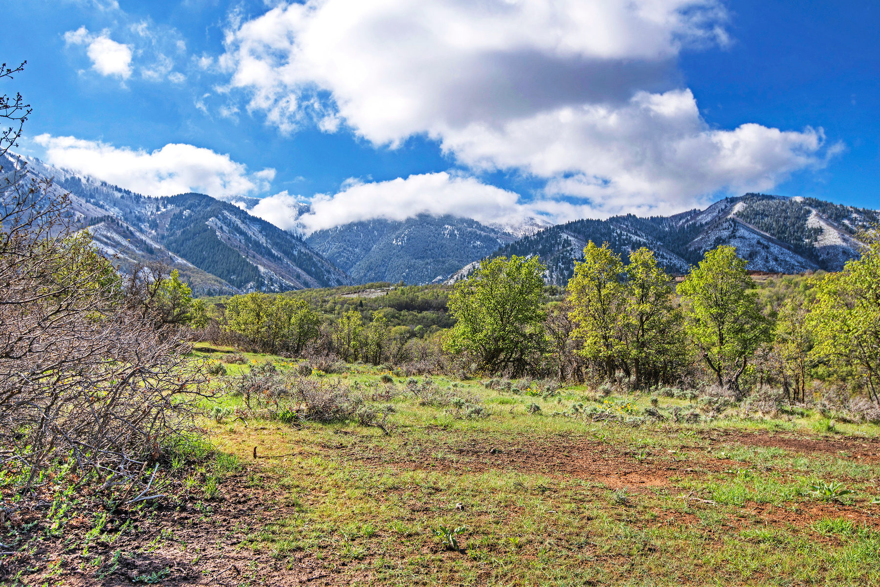 토지 용 매매 에 Prime Lot in Summit Creek 758 S Summit Creek Dr Lot 19 Woodland Hills, 유타, 84653 미국