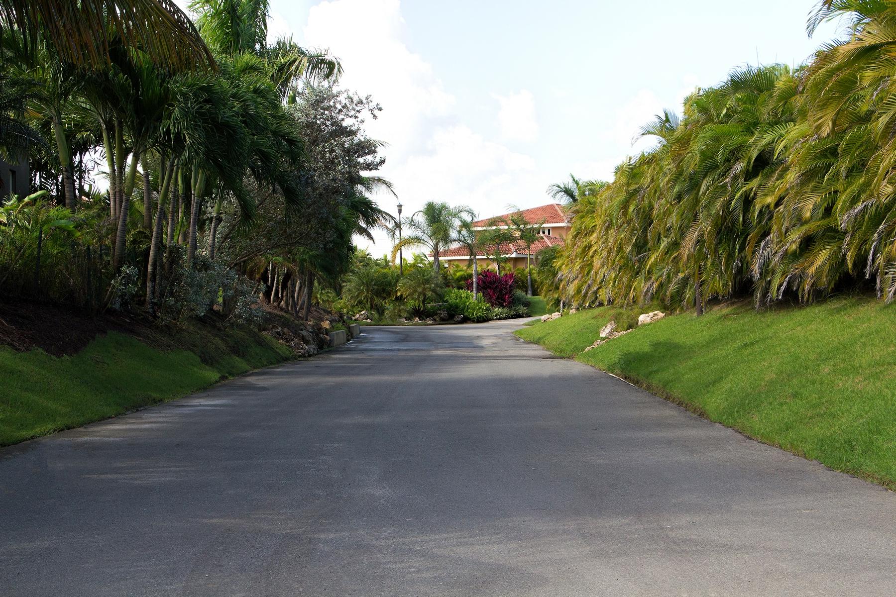 Additional photo for property listing at Dorado Beach East Unique Lot Opportunity 323 Dorado Beach East Dorado, Puerto Rico 00646 Puerto Rico