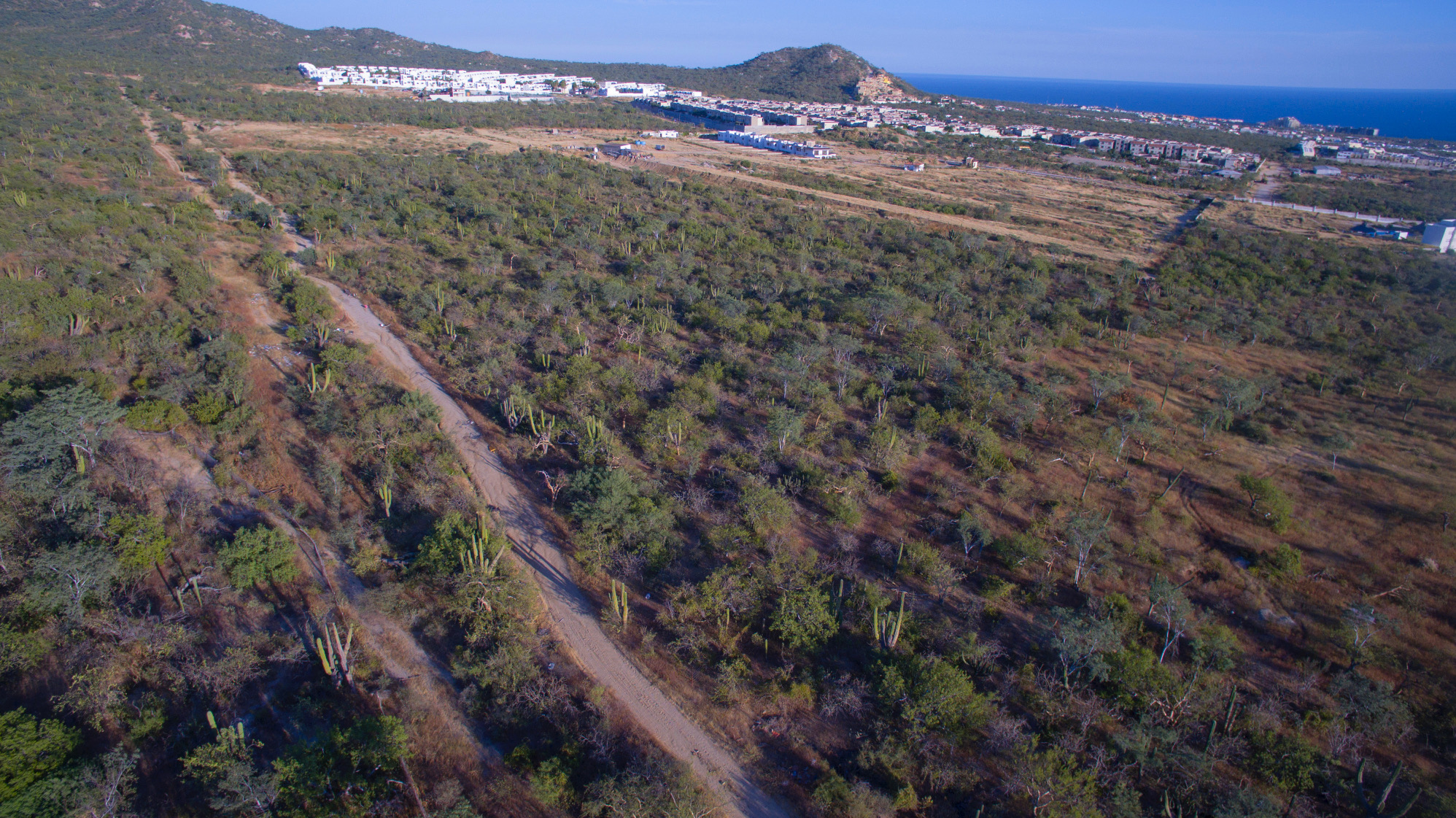 Additional photo for property listing at Parcela 251 Z6P1/3 Cabo San Lucas, Baja California Sur Mexico