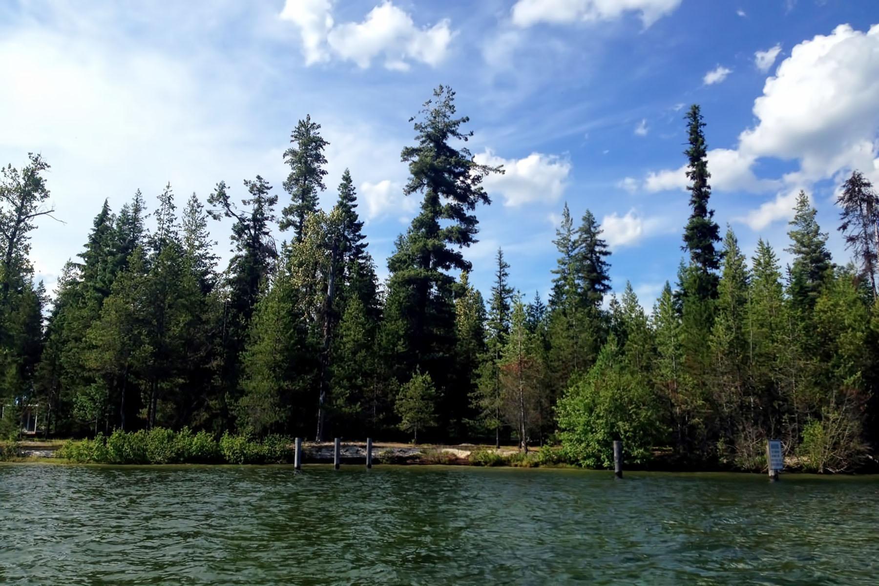 Land für Verkauf beim Waterfront Lot on Priest Lake Lot 2 Sandpiper Shores Coolin, Idaho, 83821 Vereinigte Staaten