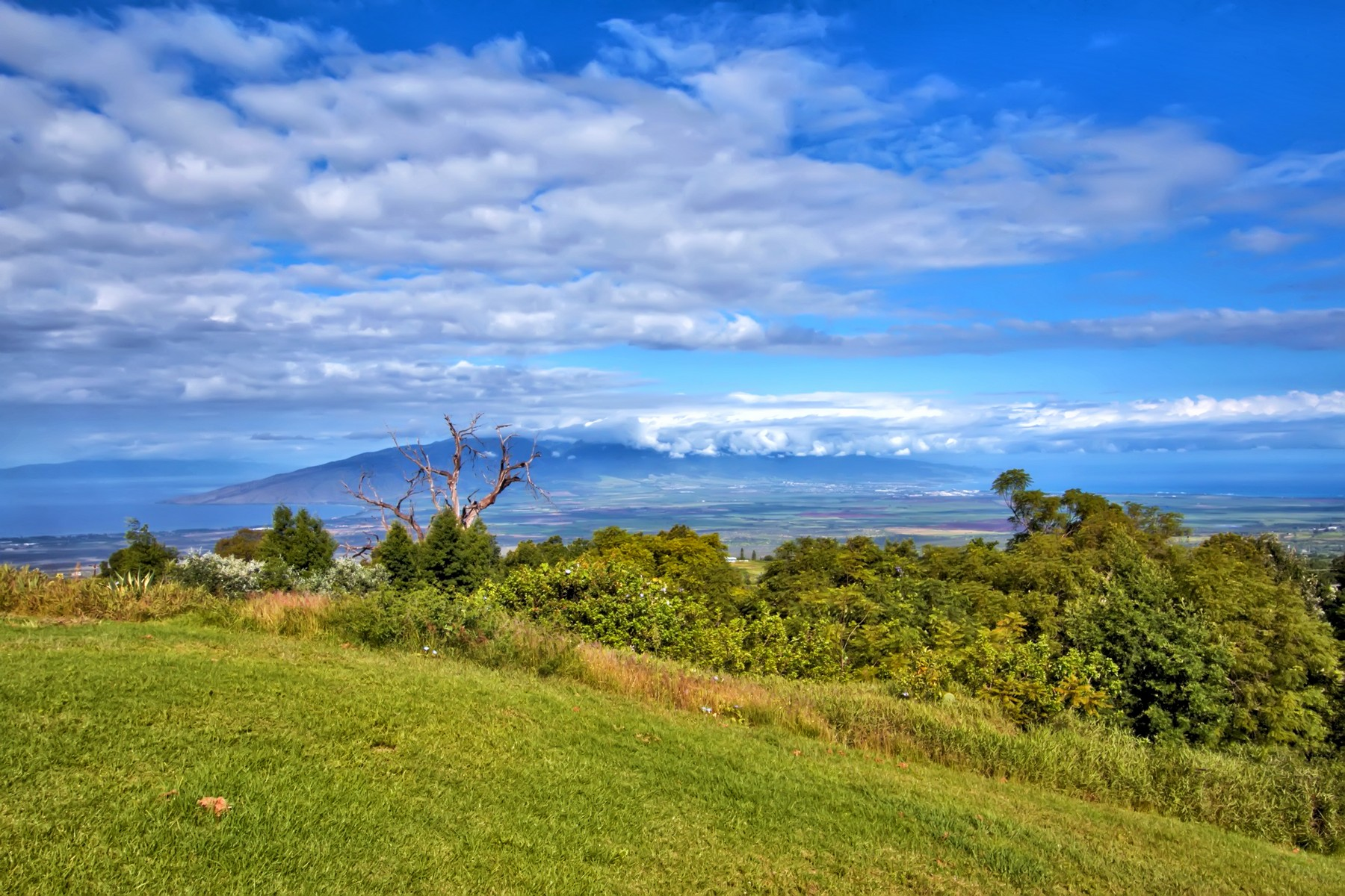 Property For Sale at Embrace Maui's Natural Beauty From 2.77 Acres On The Slopes of Haleakala