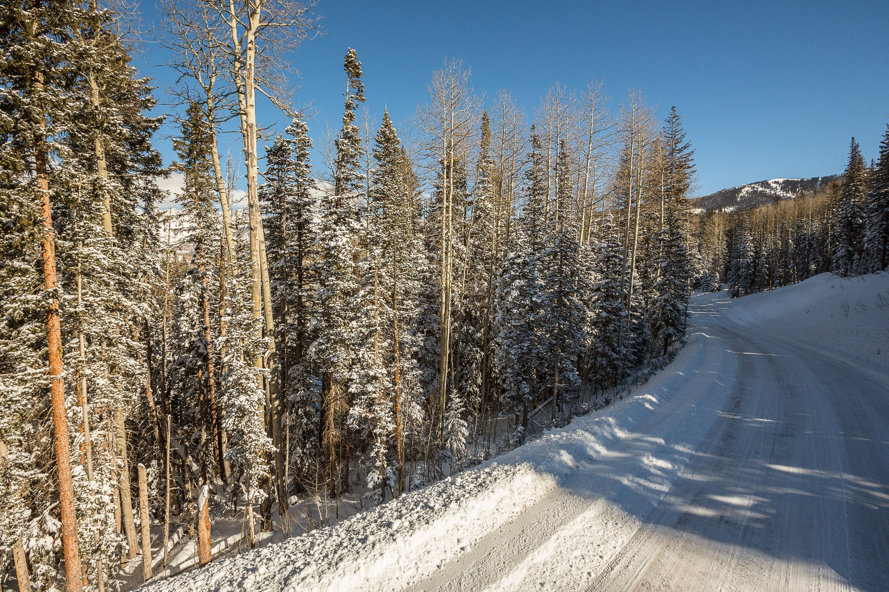 Land for Sale at TBD Rocky Road 360 Telluride, Colorado, 81435 United States
