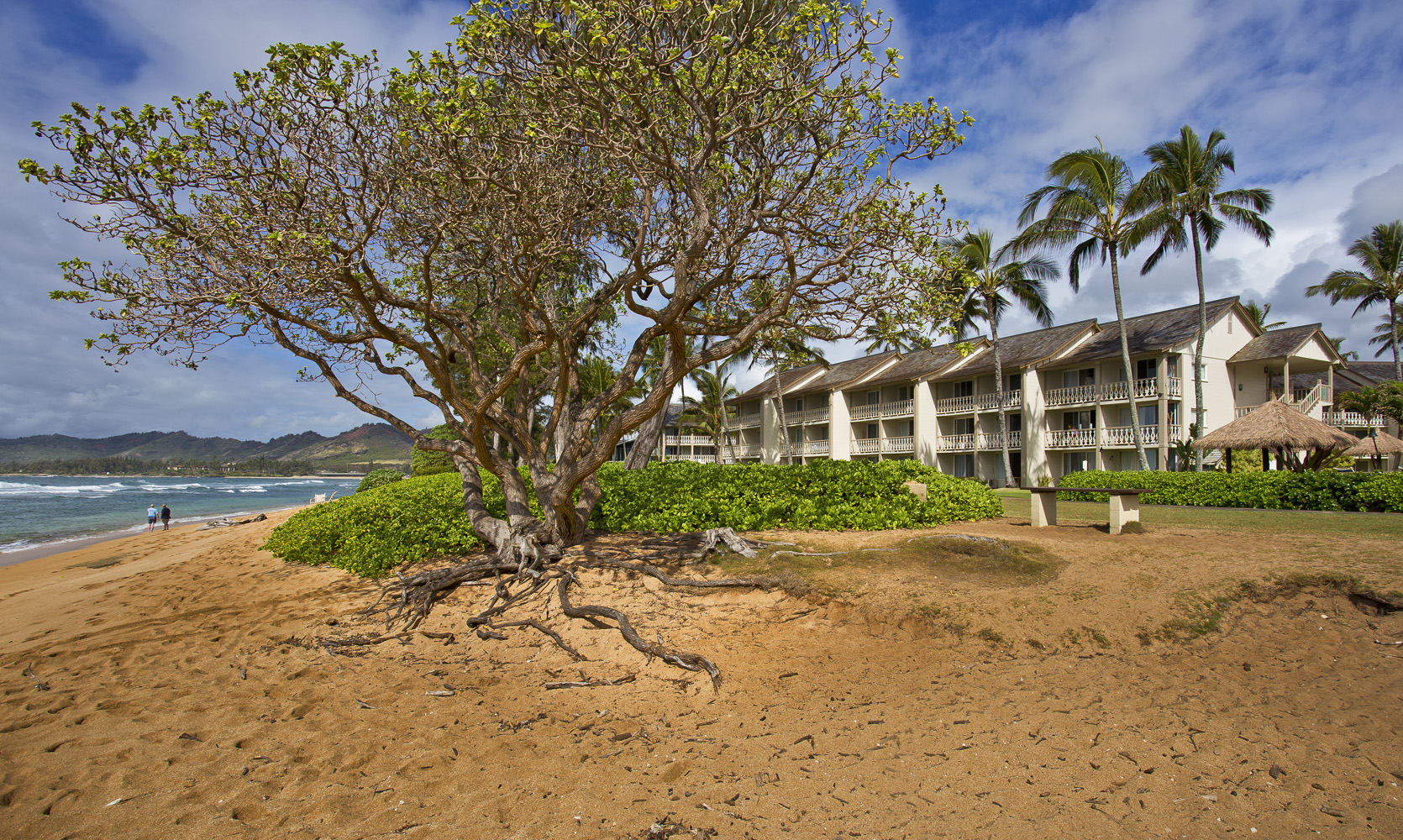Condominio por un Venta en Islander on the Beach 440 ALEKA PL, #112 Kapaa, Hawaii 96746 Estados Unidos