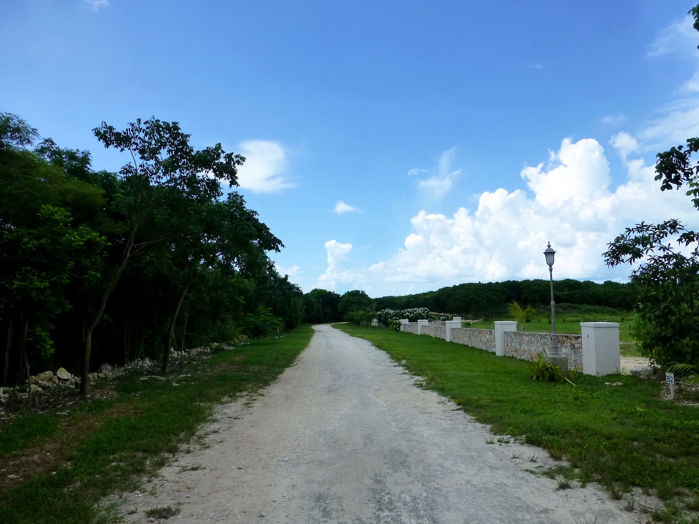 Additional photo for property listing at Great Estate-sized Lots- Pineapple Hills 格里高利城, 伊路瑟拉 巴哈马