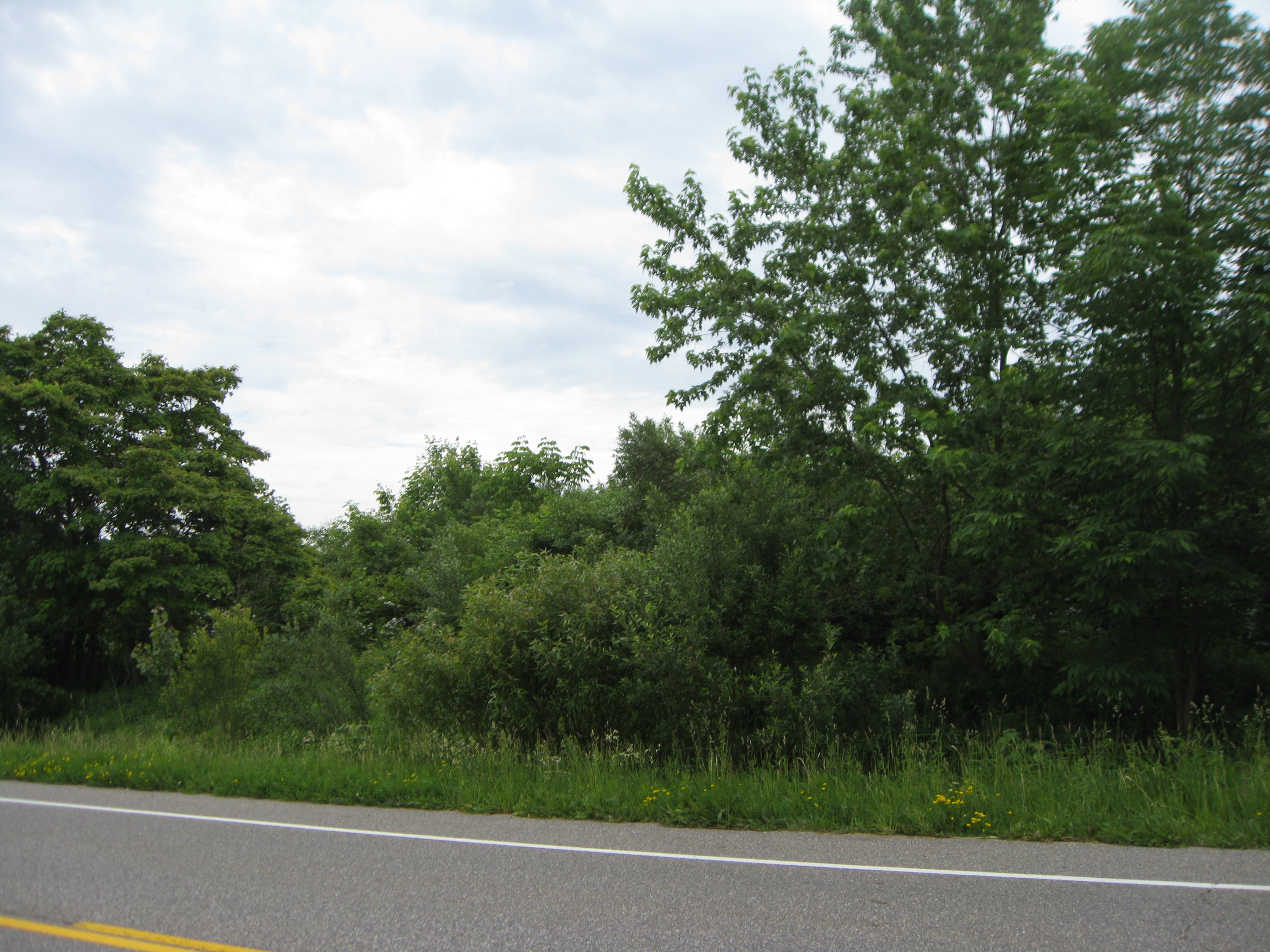Land for Sale at 1 136th Avenue Saugatuck, Michigan, 49453 United States