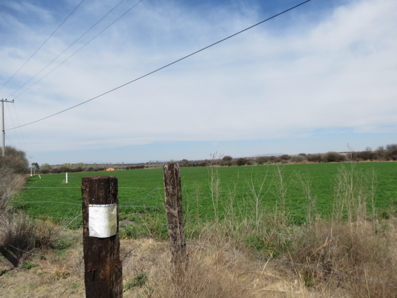 Additional photo for property listing at Rancho de Los Charcos San Miguel De Allende, Guanajuato Mexico