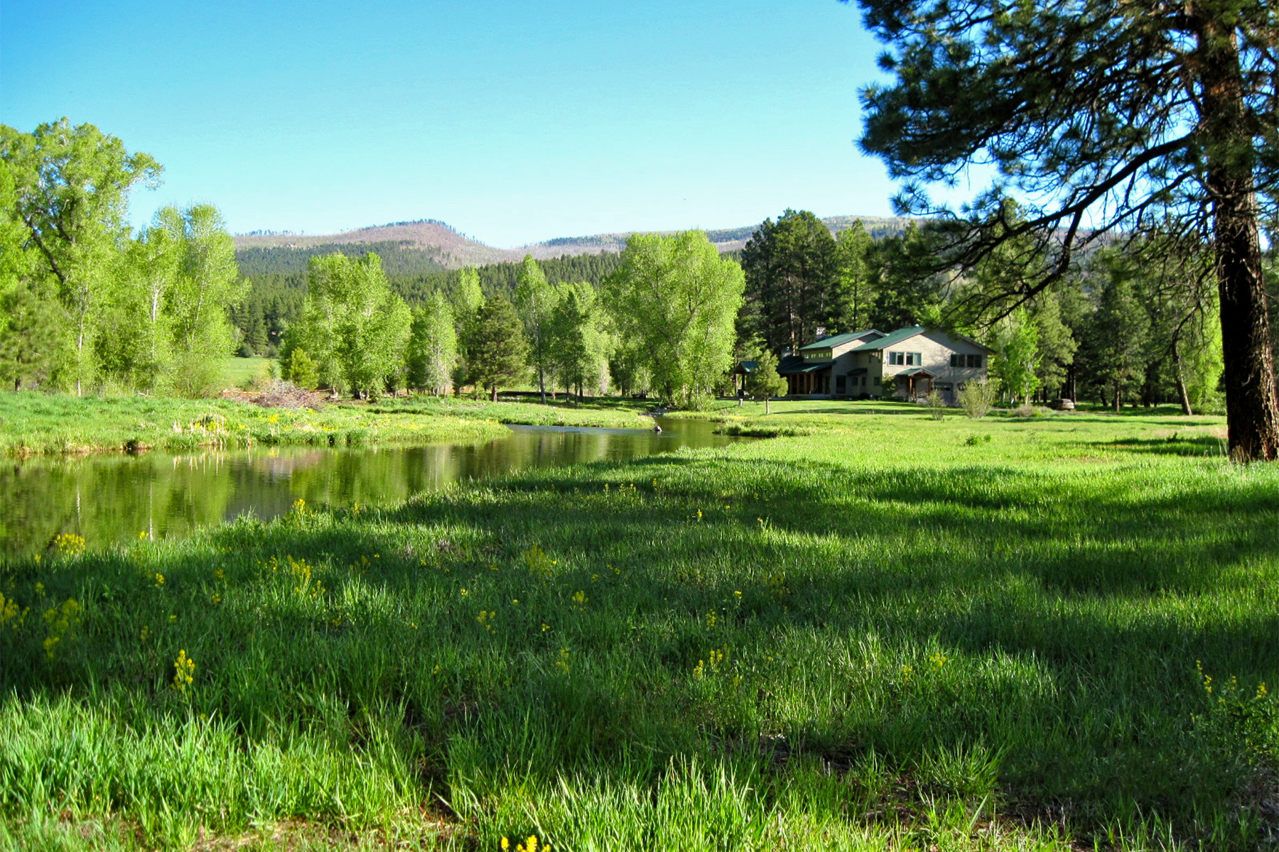 Farm / Ranch / Plantation for Sale at Gray Hackle Ranch 201 Gray Hackle Drive Bayfield, Colorado, 81122 United States