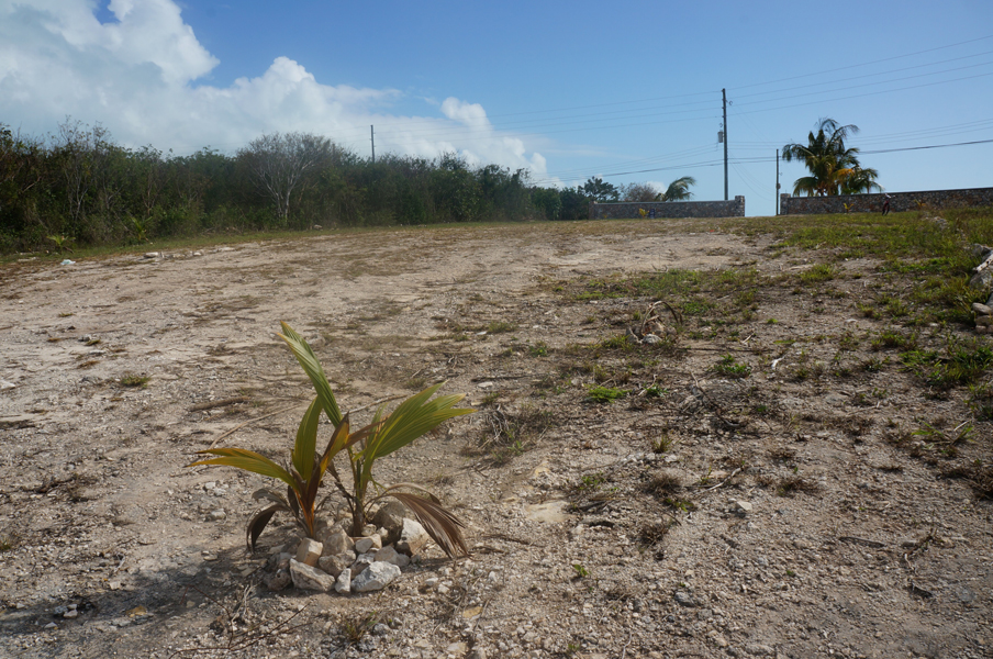 Land for Sale at Ocean View North Spanish Wells, Eleuthera Bahamas