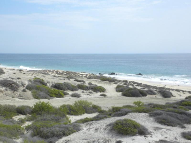 Land for Sale at Costa de Oro 41 Other Baja California Sur, Baja California Sur 23400 Mexico
