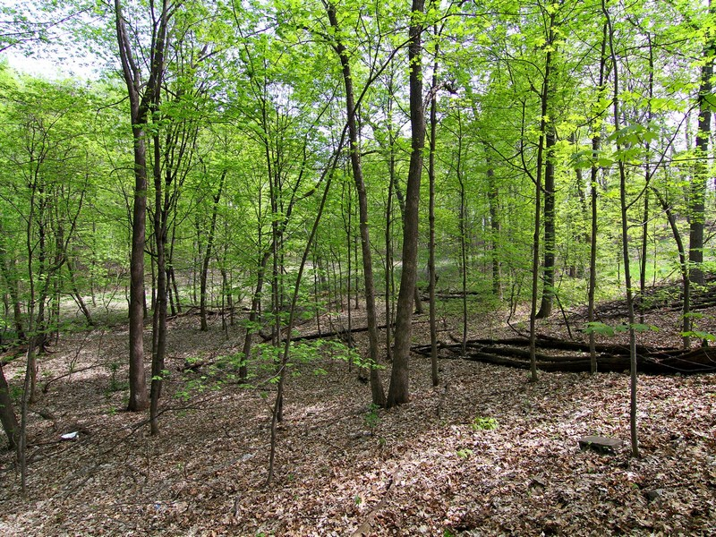 Land for Sale at 7607 Frontier Trail Chanhassen, Minnesota, 55317 United States