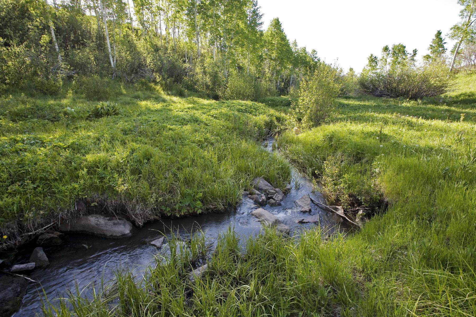 Terreno para Venda às P 52 County Road P52 P52 County Rd Telluride, Colorado, 81435 Estados Unidos