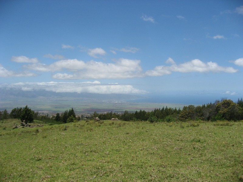 Property Of A Legacy Ranch on the Island of Maui!