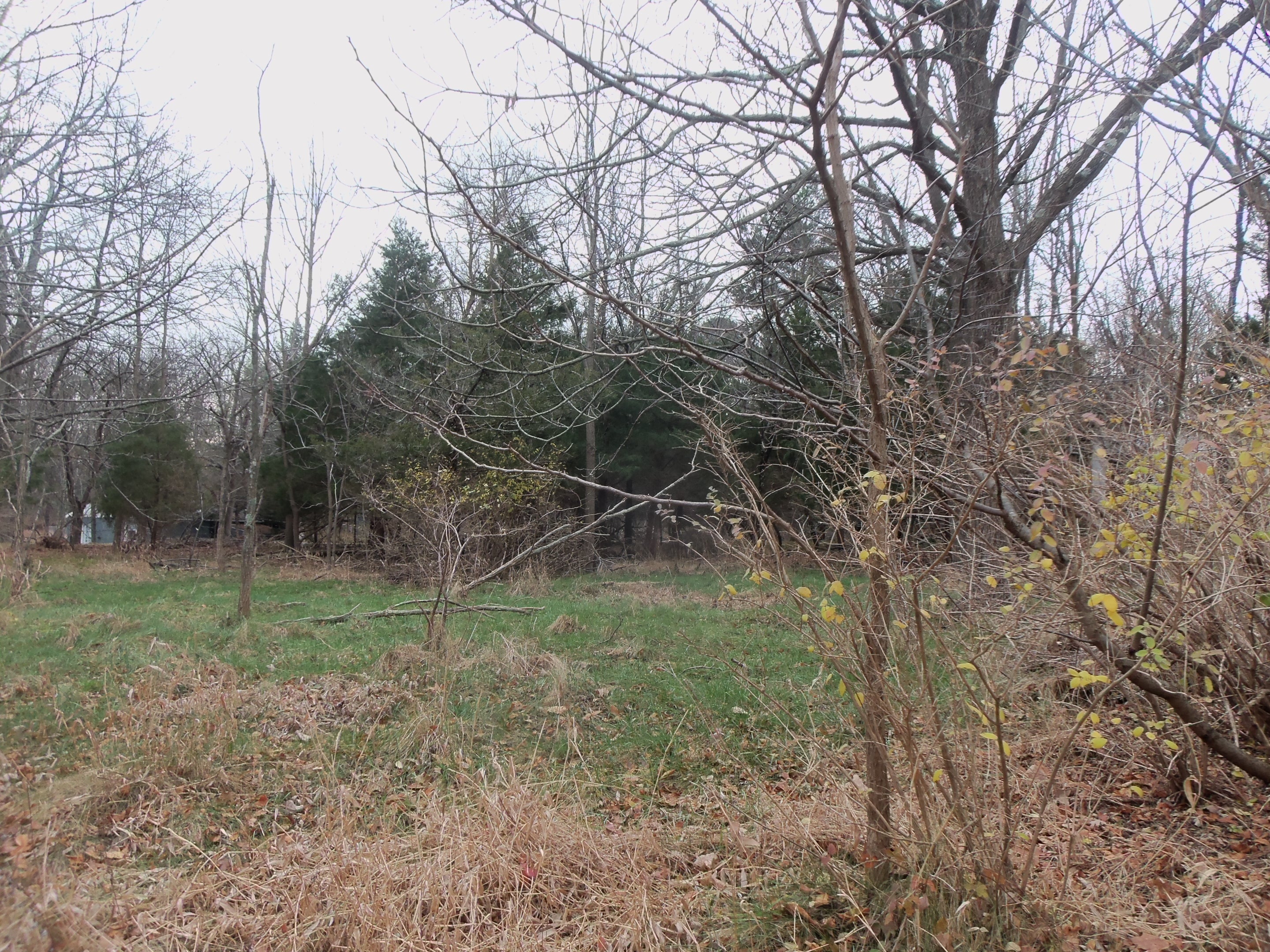 Property For Sale at Beautifully Wooded Site