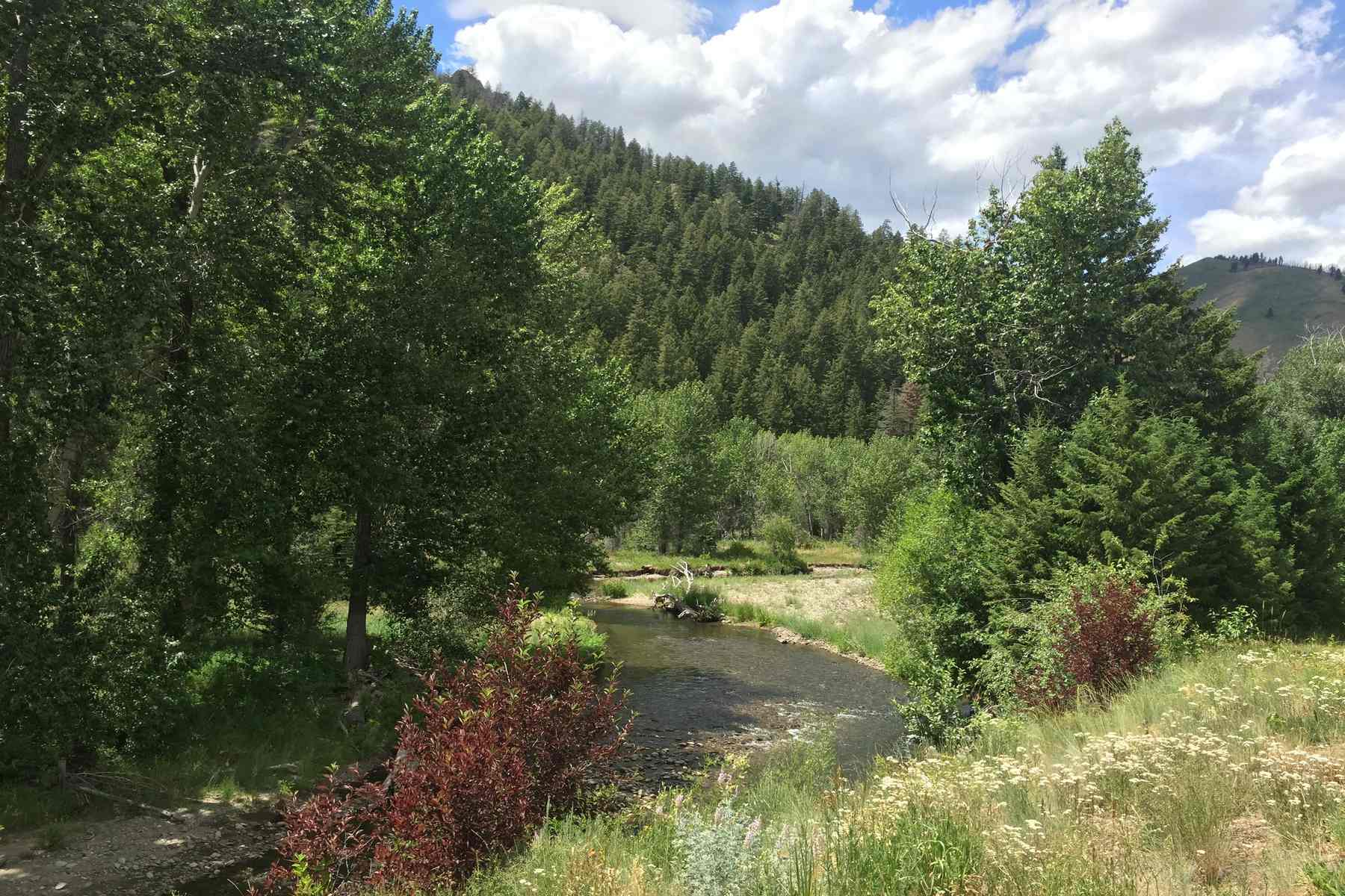 sales property at Warm Springs Riverfront Lot