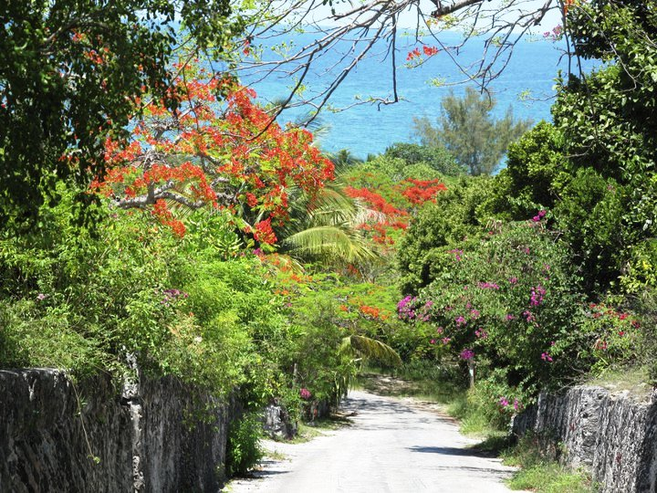 Additional photo for property listing at Governor's Harbour Hillside Governors Harbour, Eleuthera Bahamas