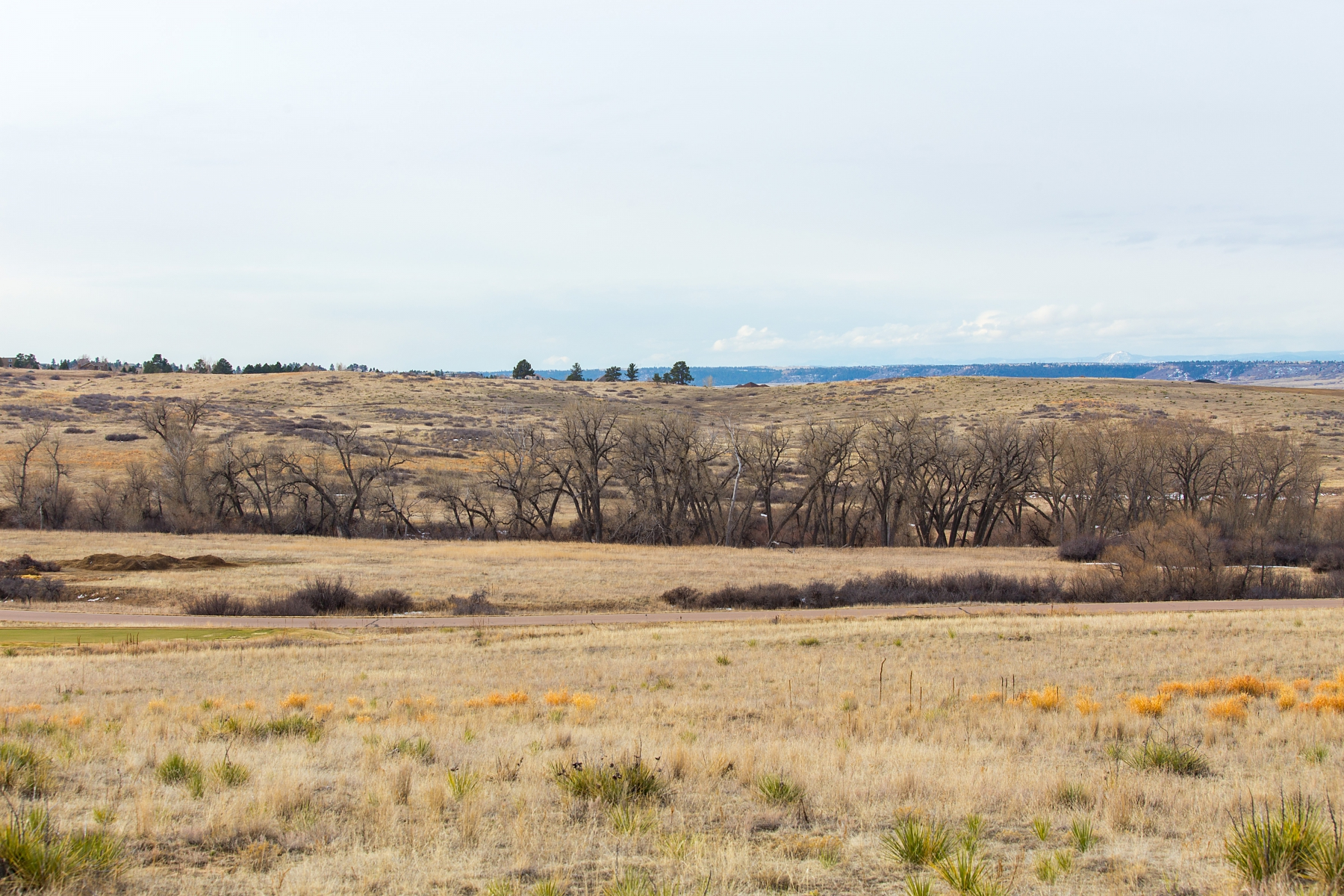 Land for Sale at Spectacular 2.20 Acre View Lot in Exclusive Colorado Golf Club 7340 Preservation Trl Parker, Colorado 80134 United States