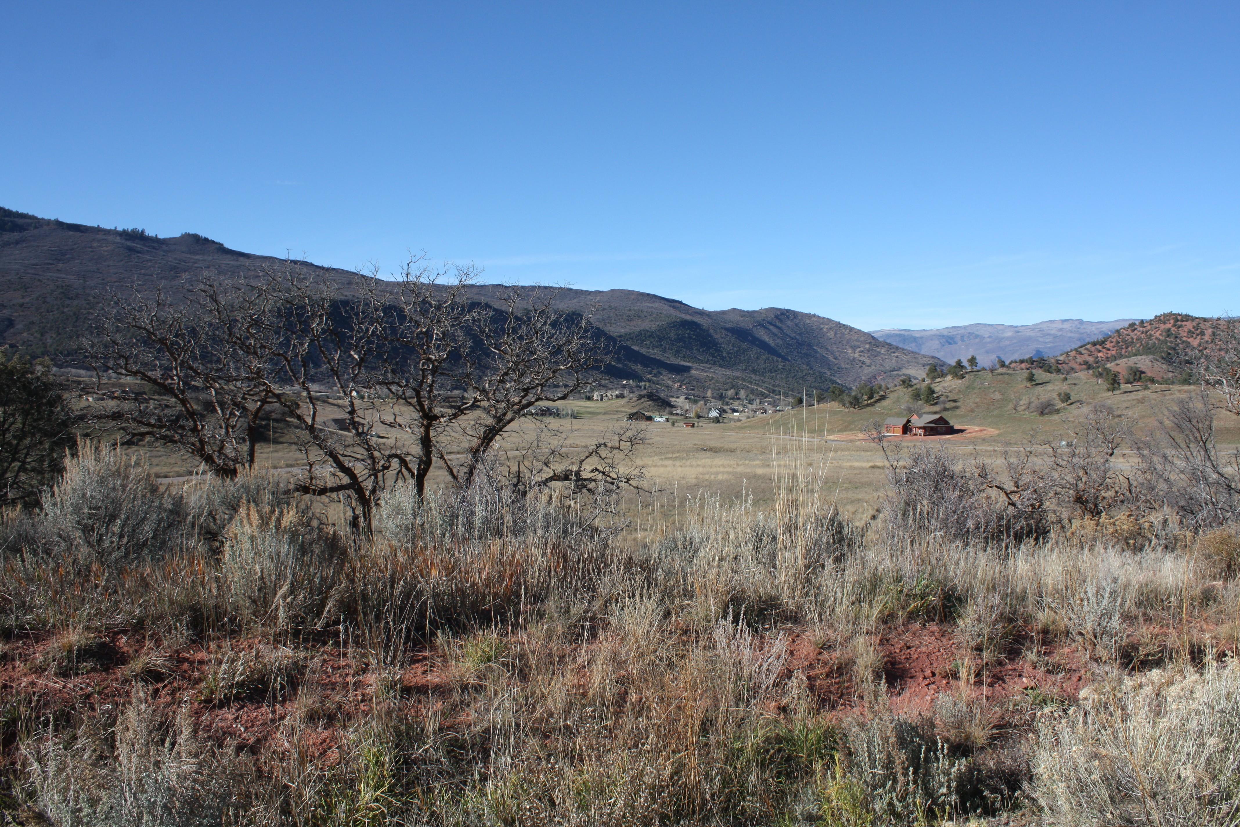 Land for Sale at Lot 50 Springridge Reserve Lot 50 Hidden Valley Glenwood Springs, Colorado, 81601 United States
