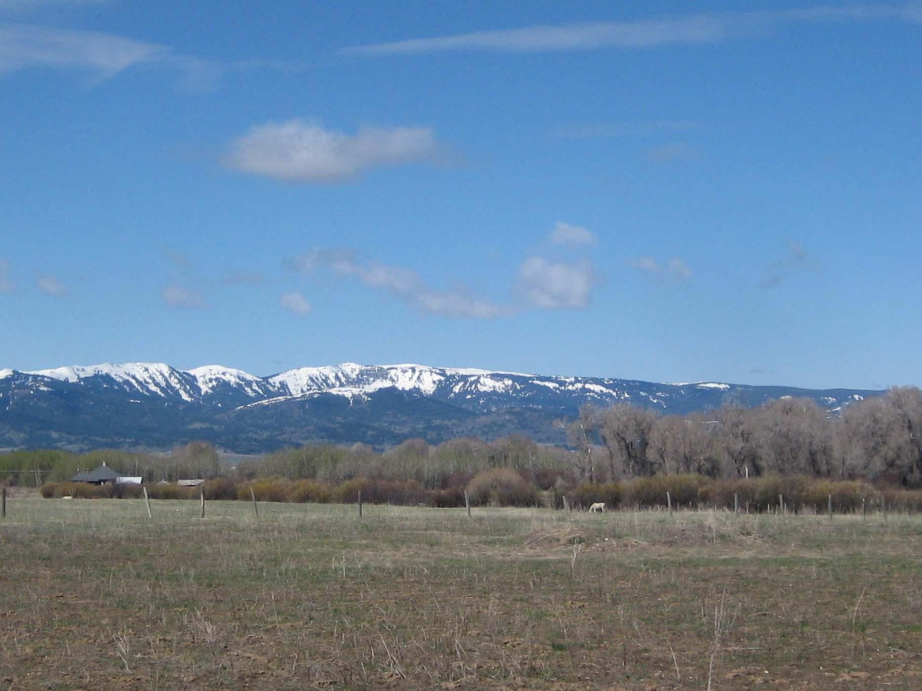 Terreno por un Venta en Exceptional Mountain Living 1136 Pineview Lane Driggs, Idaho, 83422 Jackson Hole, Estados Unidos