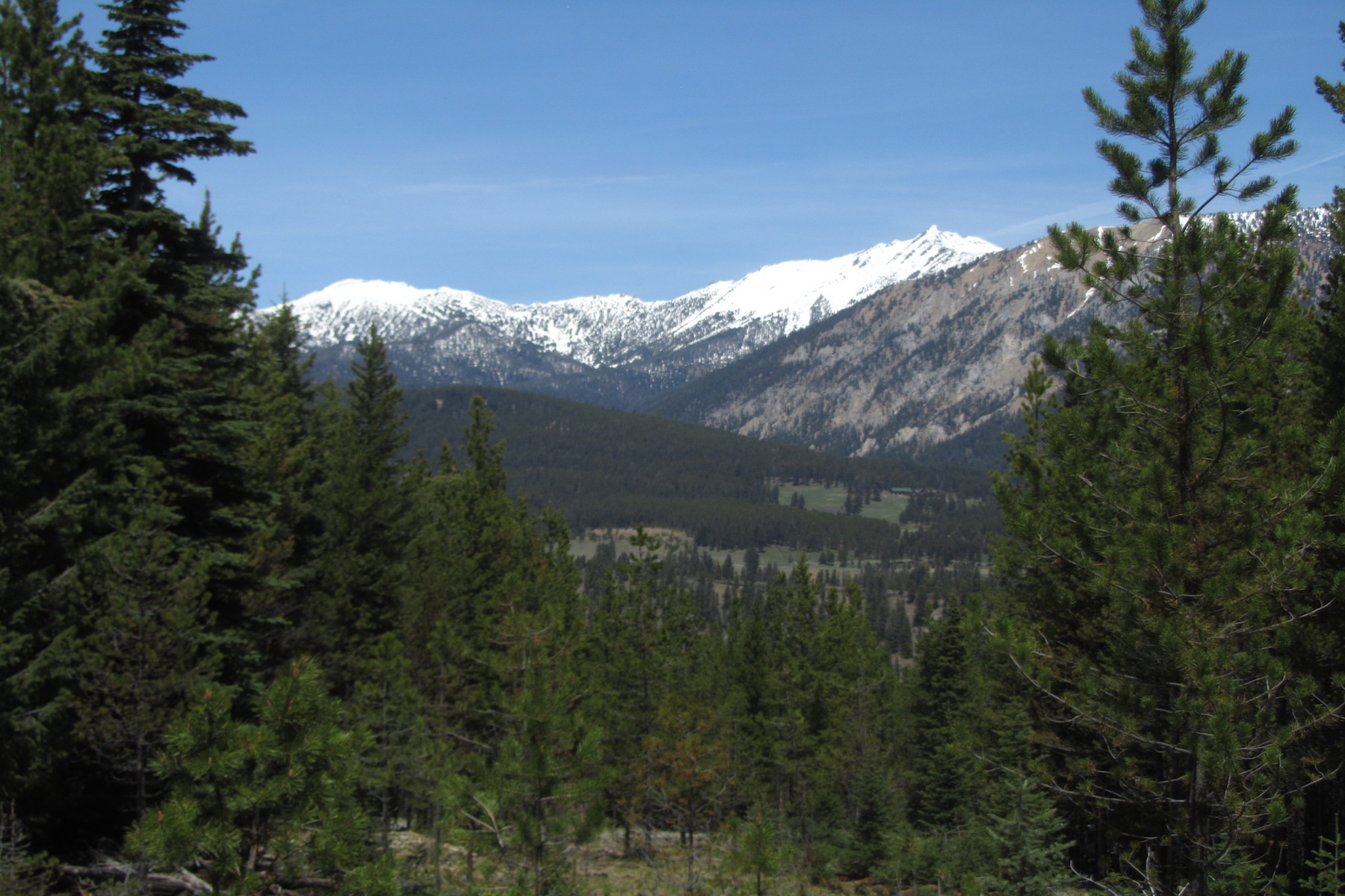 Terreno por un Venta en Spanish Peaks North Lot 66 Silverado Trail, Lot 66 Big Sky, Montana, 59716 Estados Unidos