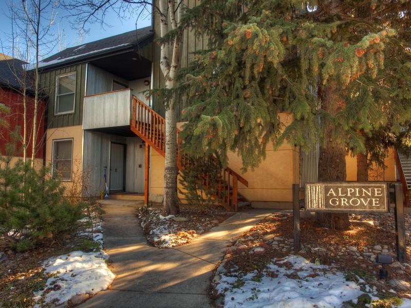 Villa per Vendita alle ore Alpine Grove Condo 420 A Pacific Ave Aspen, Colorado 81611 Stati Uniti