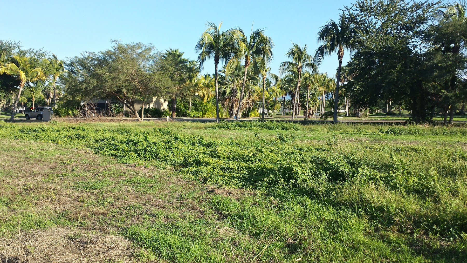 Additional photo for property listing at Residential Lot, 18 Isla Guacamayas, El Tigre Golf Course, Nuevo Vallarta Lote 18 Isla Guacamaya El Tigre Nuevo Vallarta, Nayarit 63735 México
