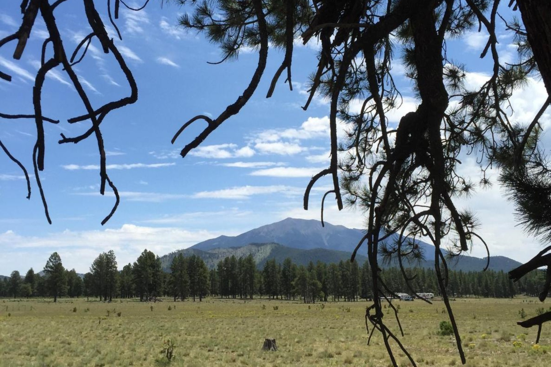 Terreno para Venda às 20 beautiful acres tucked neatly into the base of Kendricks Peak. 17928 Crowley TRL Flagstaff, Arizona 86001 Estados Unidos