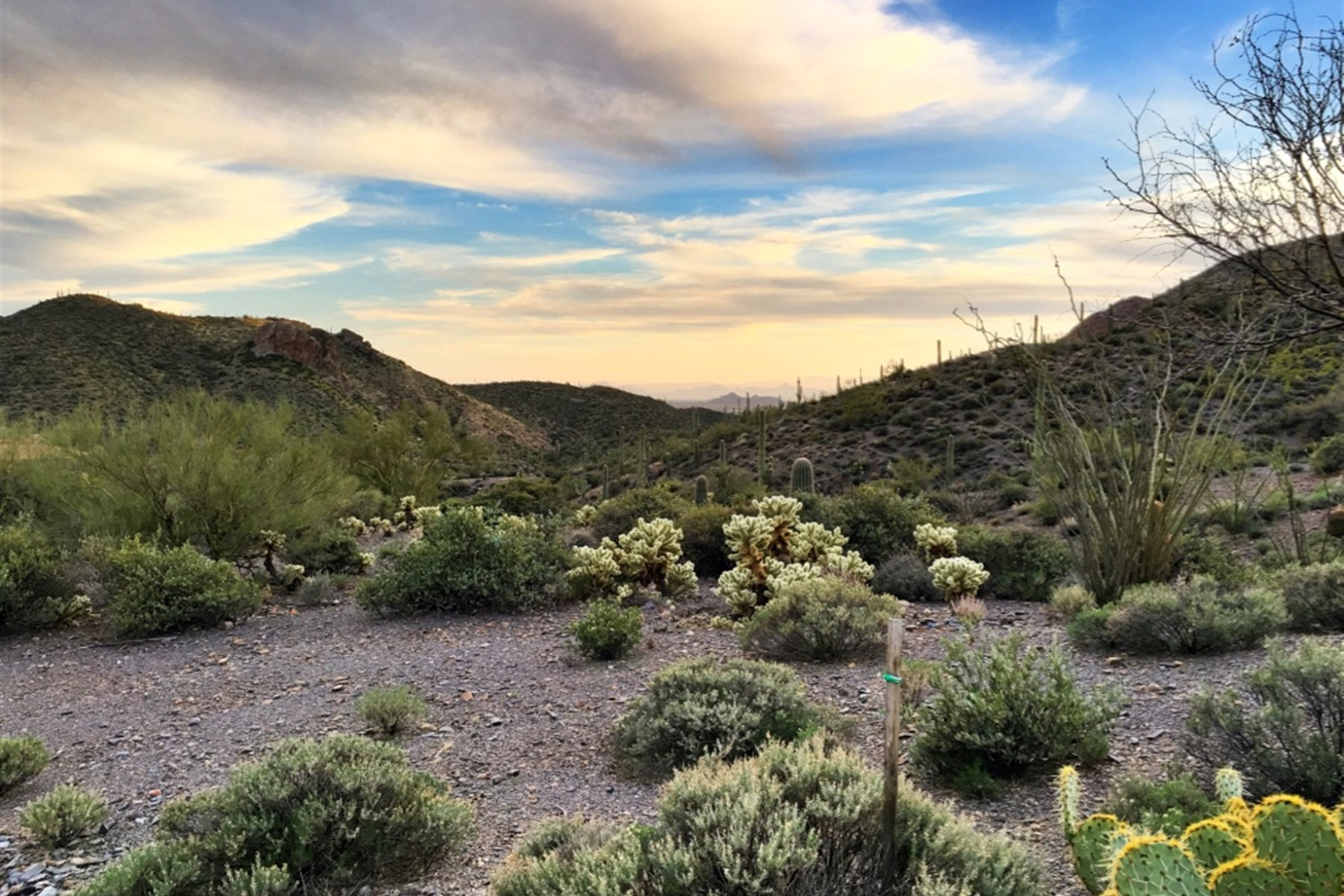 sales property at 3.2-acre lot located within Desert Mountain's Cintarosa