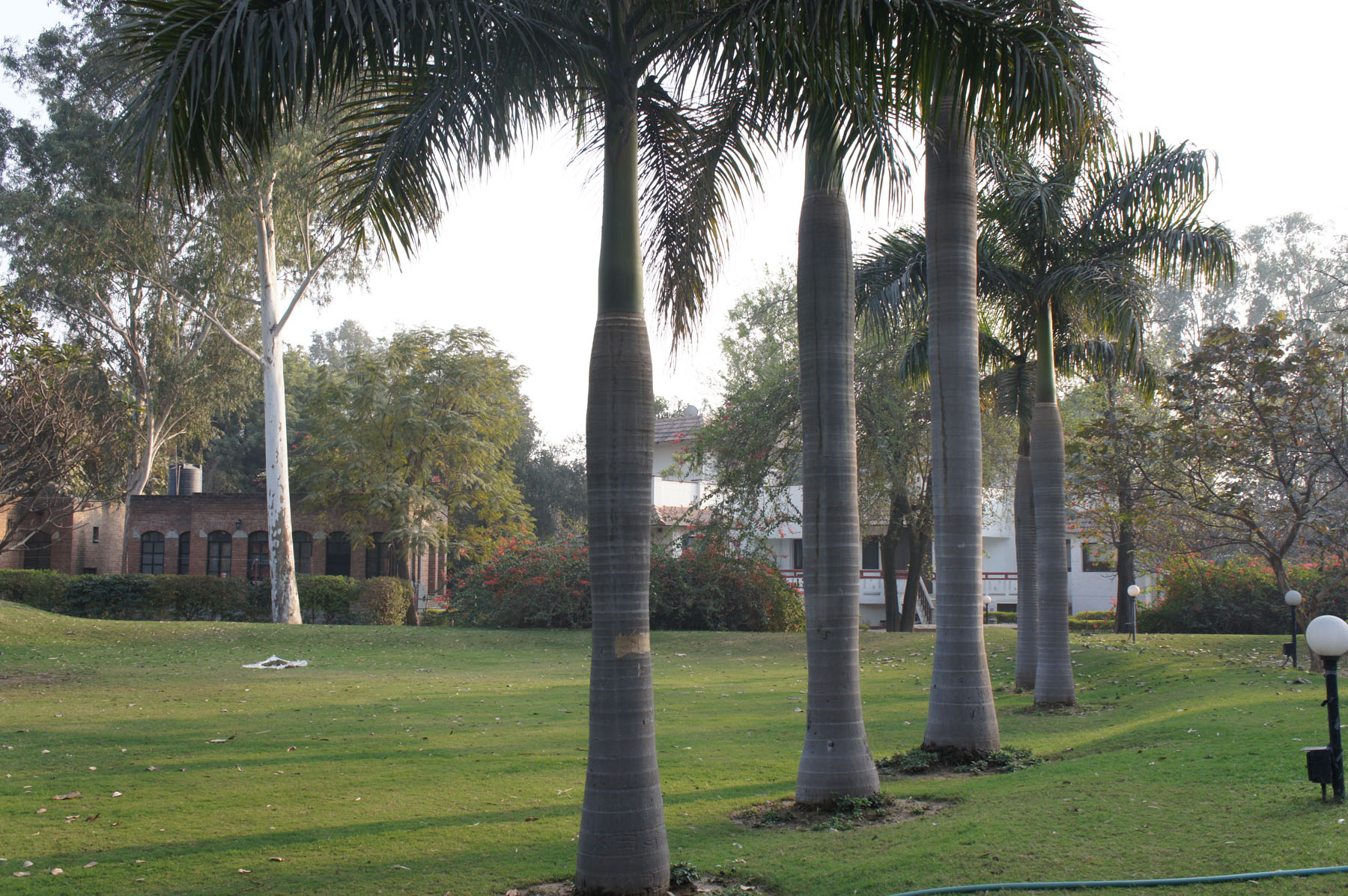 Property Of Rajokri-Sprawling Farm House