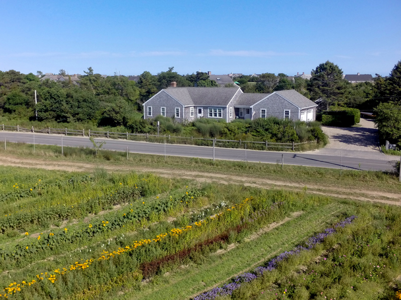 Casa Unifamiliar por un Venta en AMAZING LOCATION! 20 Bartlett Farm Road Nantucket, Massachusetts 02554 Estados Unidos
