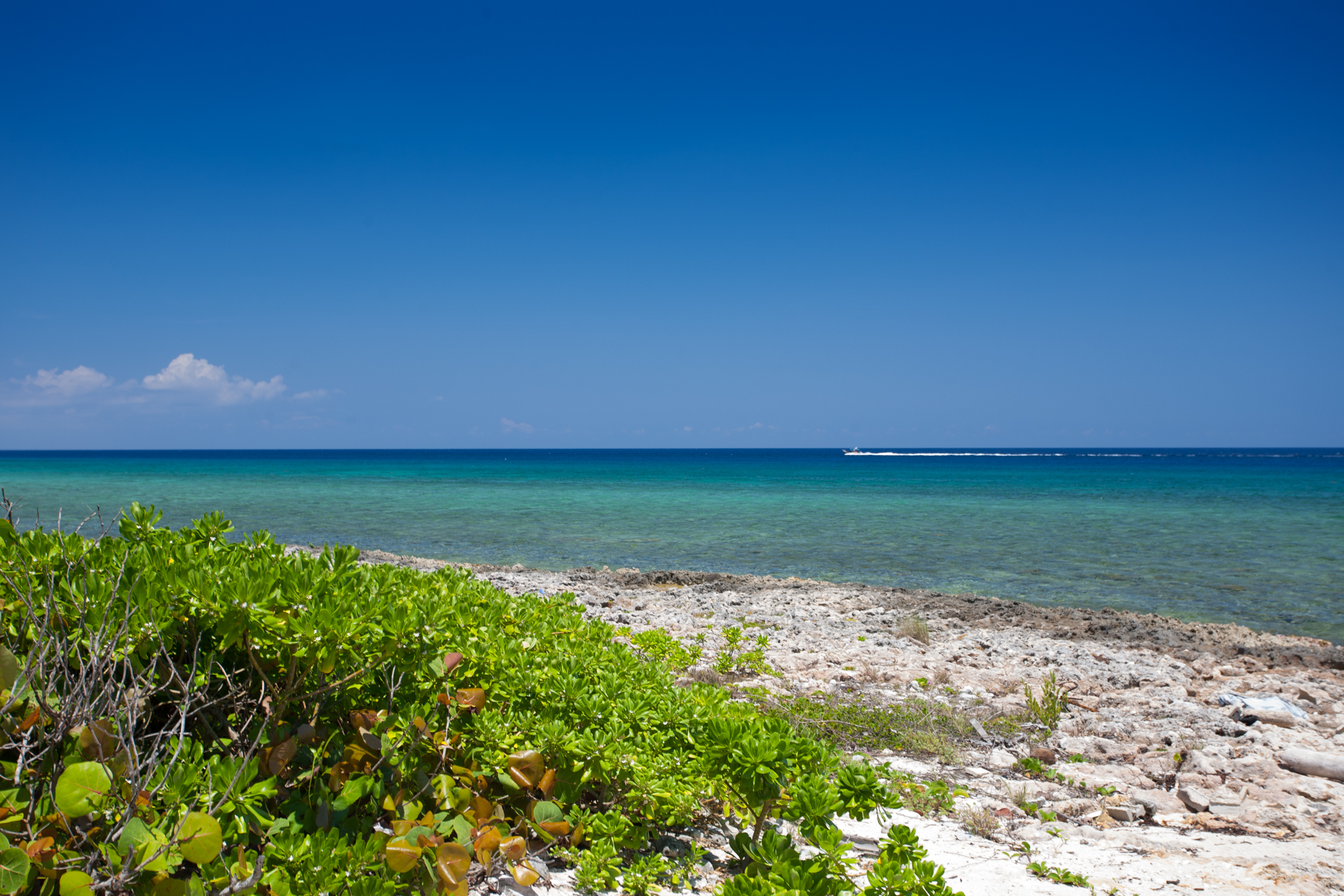sales property at Ocean front land, Cayman Islands real estate
