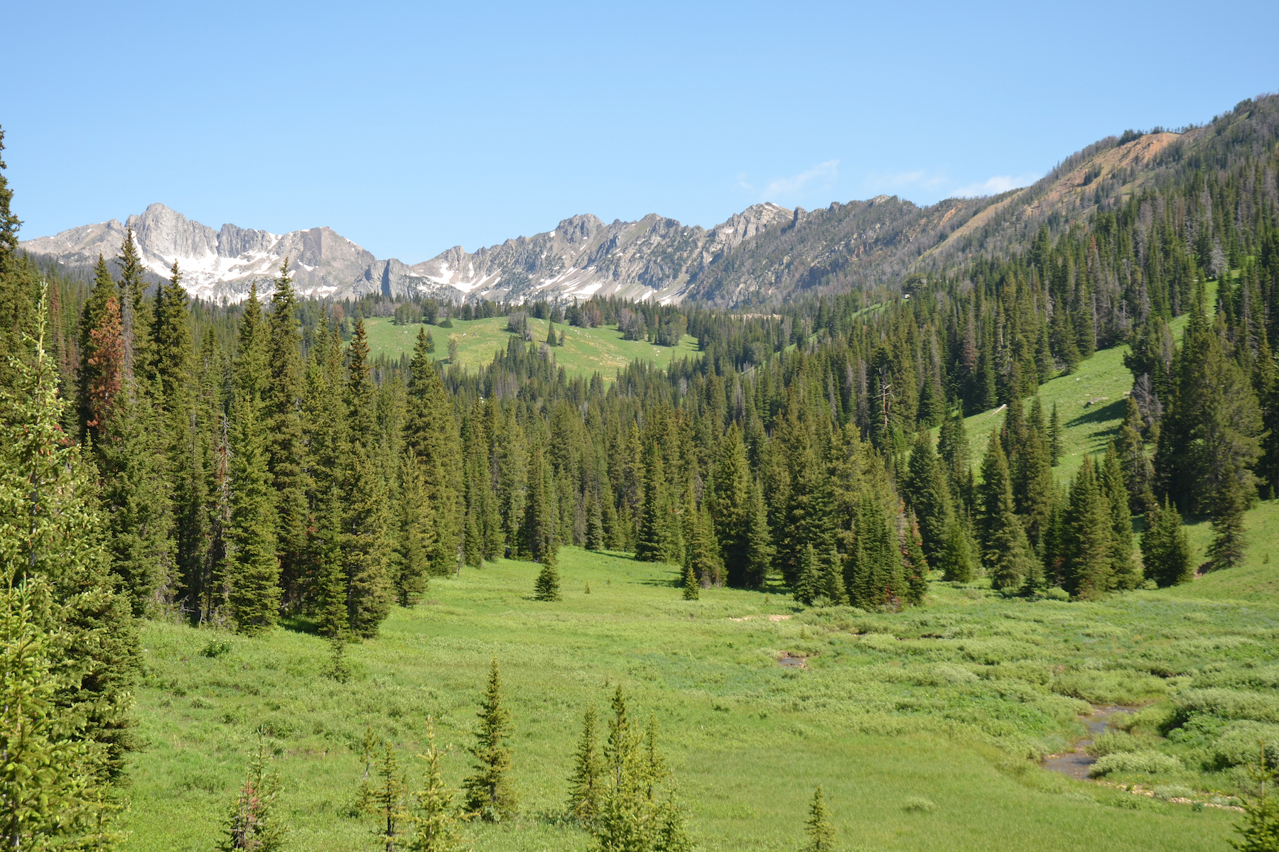 Property Of Beehive Basin Homesite