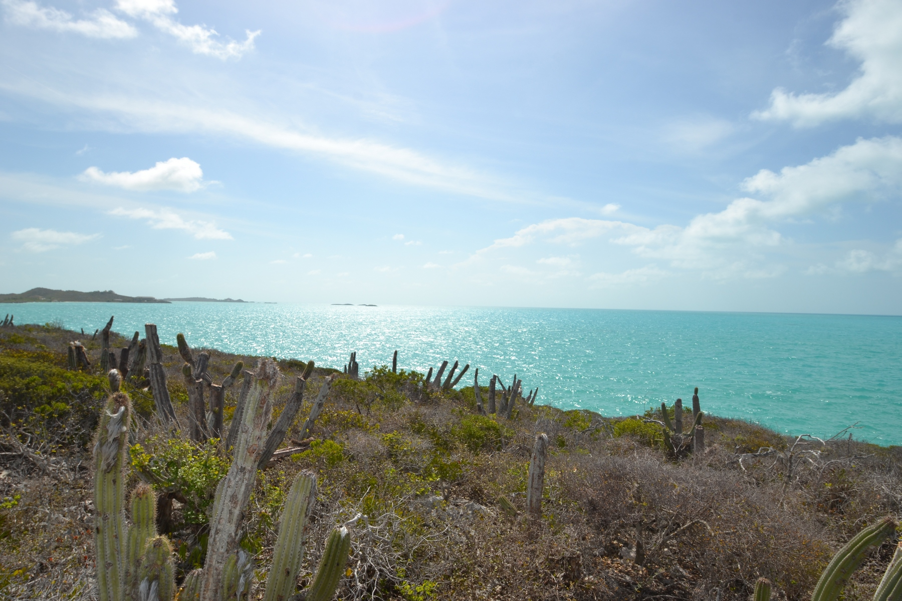 Additional photo for property listing at Oceanfront Land on Ocean Drive  Turtle Tail, Провиденсьялес TCI Теркс И Кайкос