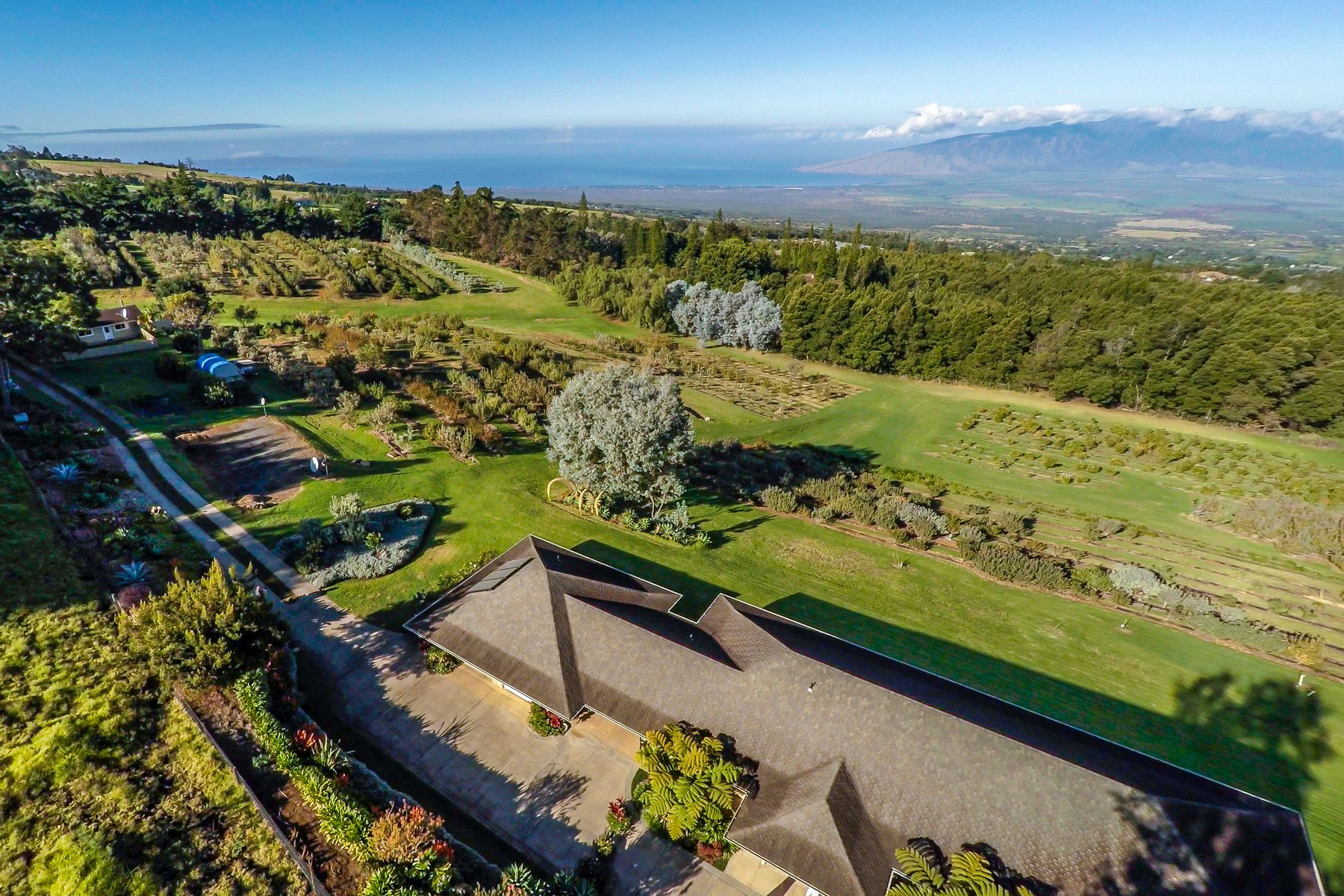 Property For Sale at Live Among Kings In Pastoral Kula, Maui