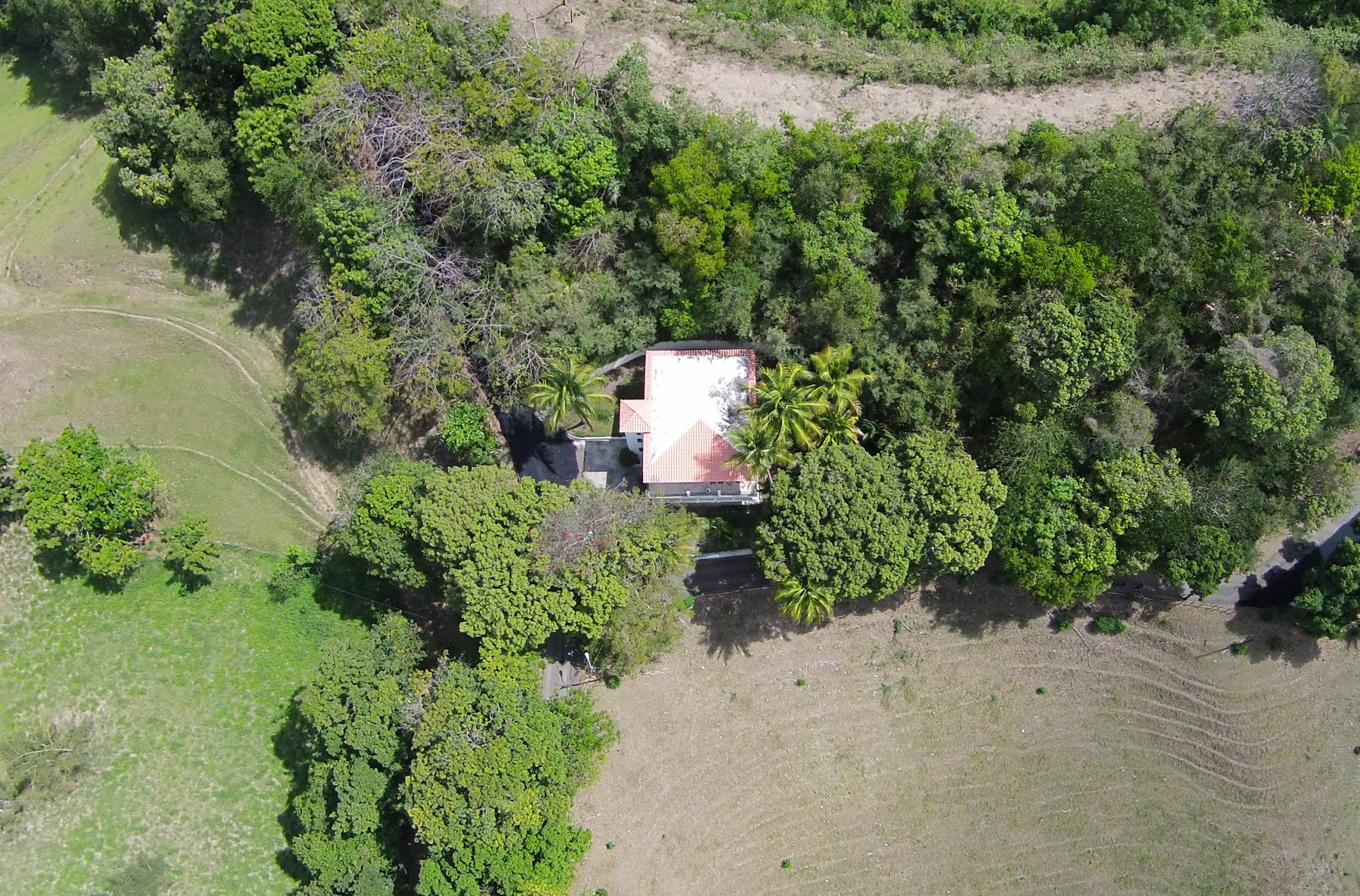 Additional photo for property listing at Picturesque Chateau on Rincon Hillside Carr. 411, KM. 0.2 Interior BO. Calvache Rincon, Puerto Rico 00667 プエルトリコ