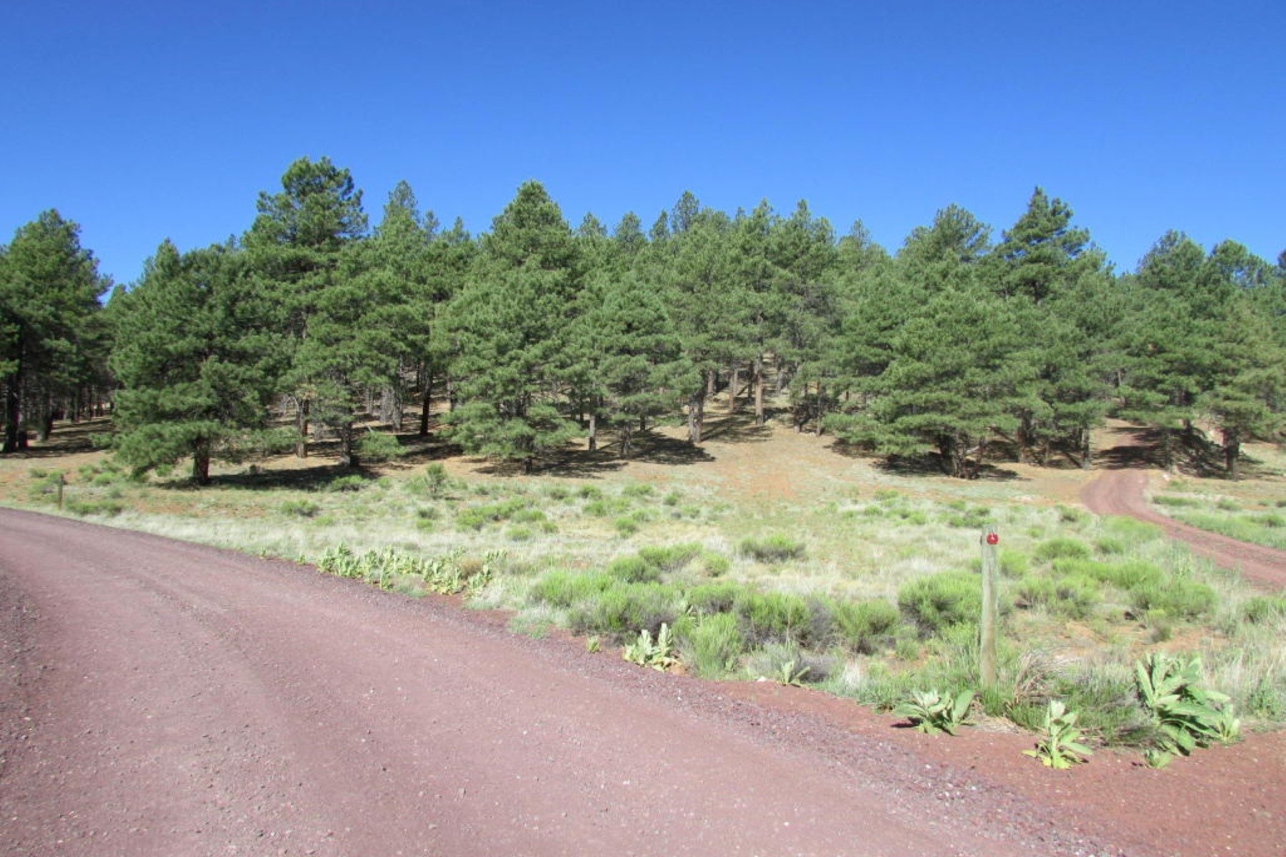 Land for Sale at 2.5 acre parcel captures the essence of the dream home site location 8b W Antoinette Way Flagstaff, Arizona, 86001 United States