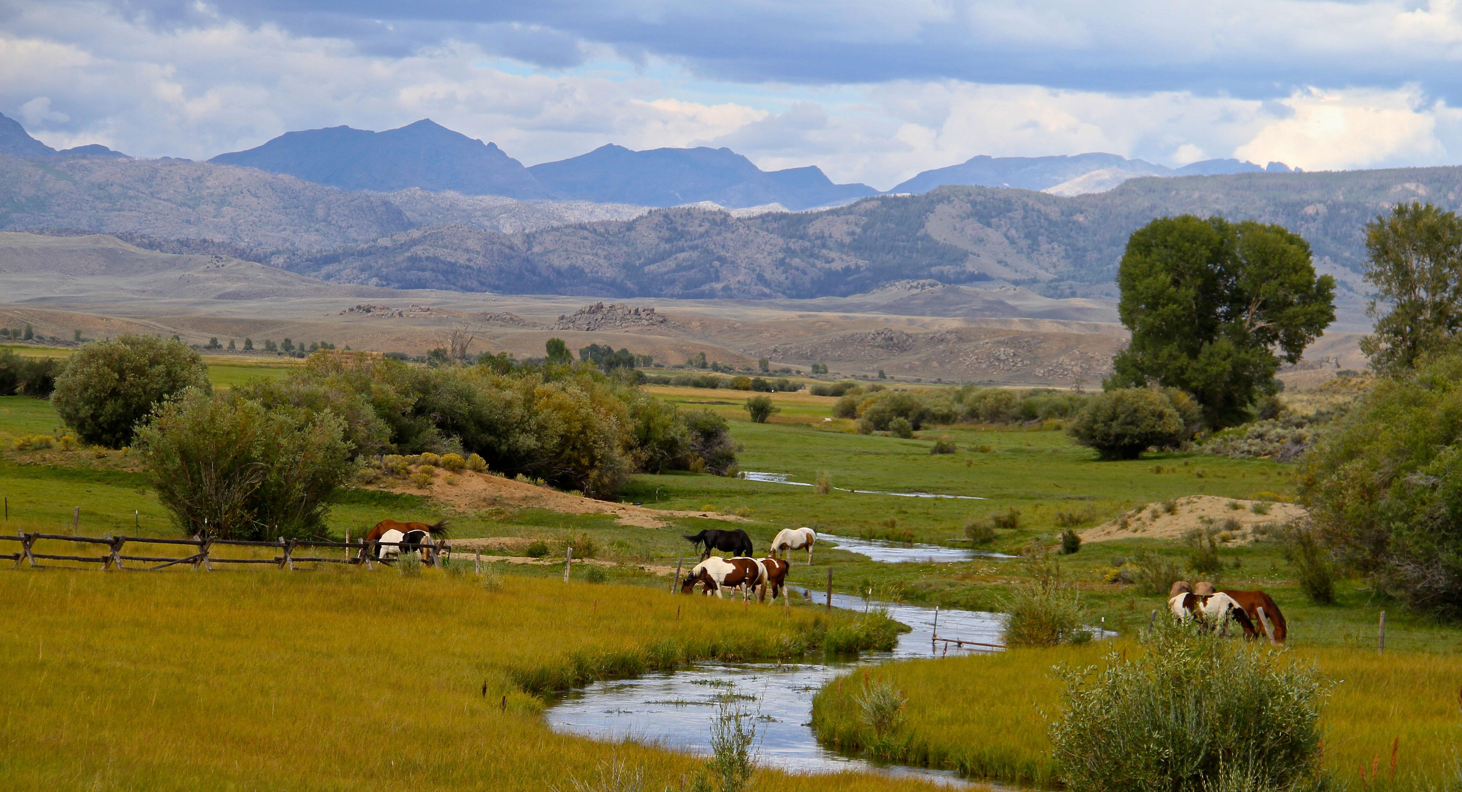 농장 / 목장 / 농장 용 매매 에 Boulder Horse Ranch 115 Grable Lane Boulder, 와이오밍 82923 미국