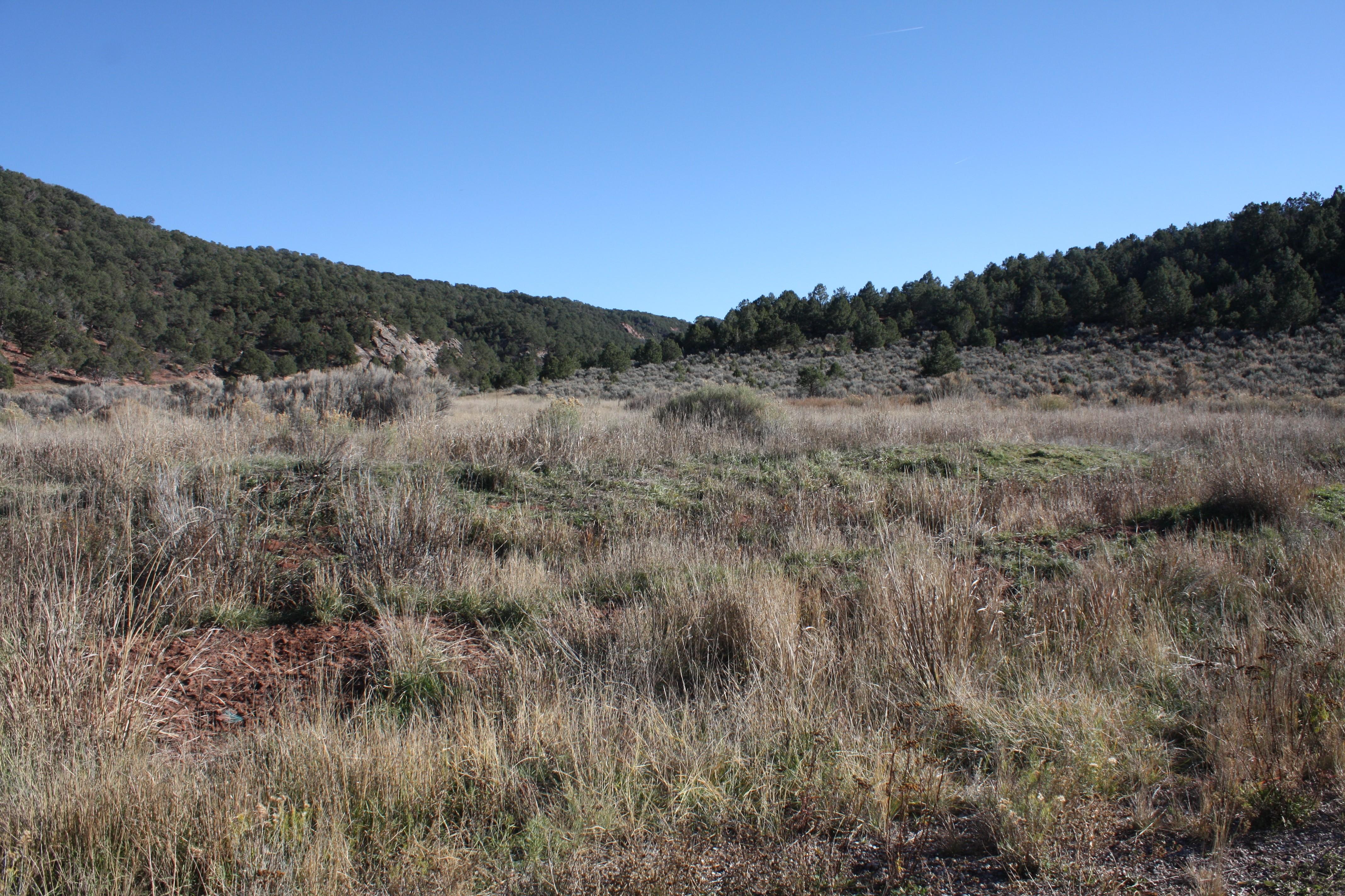 Land for Sale at Lot 64 Springridge Reserve Lot 64 Hidden Valley Glenwood Springs, Colorado, 81601 United States