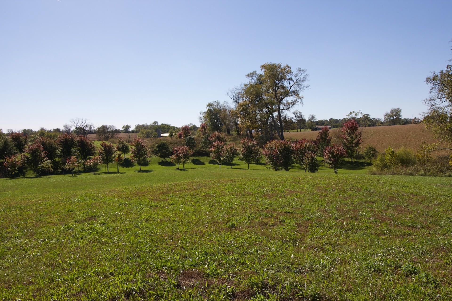 Land for Sale at 1100 Poplar Ridge Road Goshen, Kentucky 40026 United States